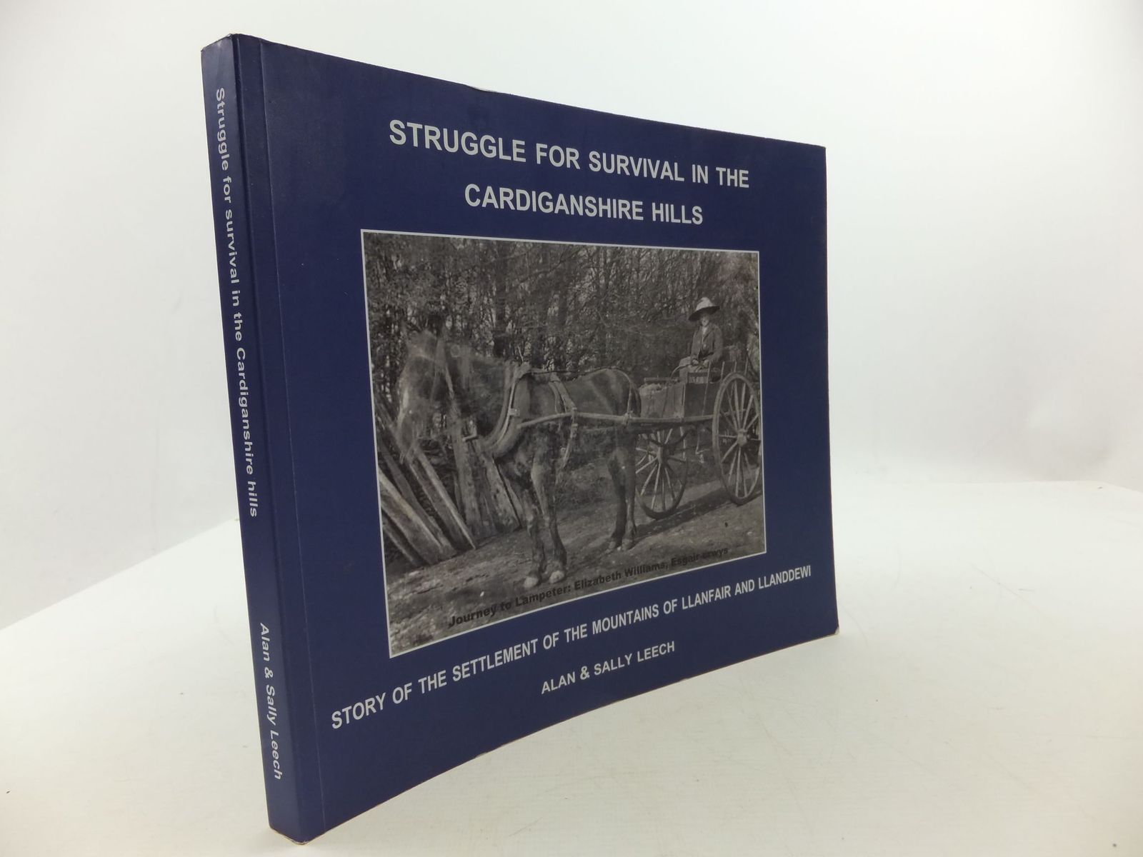 Photo of STRUGGLE FOR SURVIVAL IN THE CARDIGANSHIRE HILLS- Stock Number: 1708383