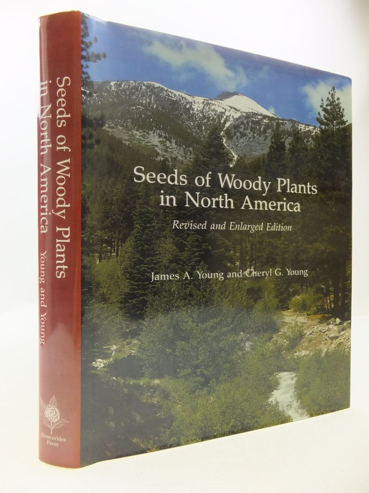Photo of SEEDS OF WOODY PLANTS IN NORTH AMERICA written by Young, James A. Young, Cheryl G. published by Dioscorides Press (STOCK CODE: 1708766)  for sale by Stella & Rose's Books