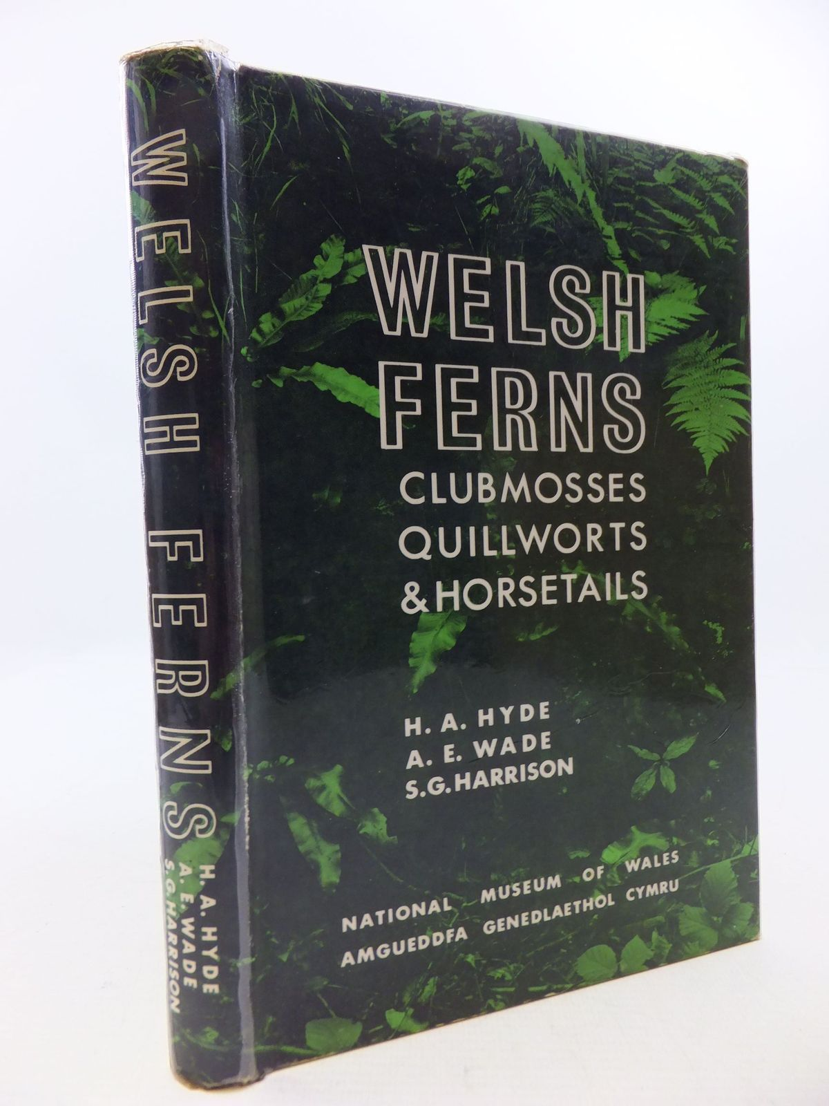 Photo of WELSH FERNS CLUBMOSSES QUILLWORTS AND HORSETAILS- Stock Number: 1709862