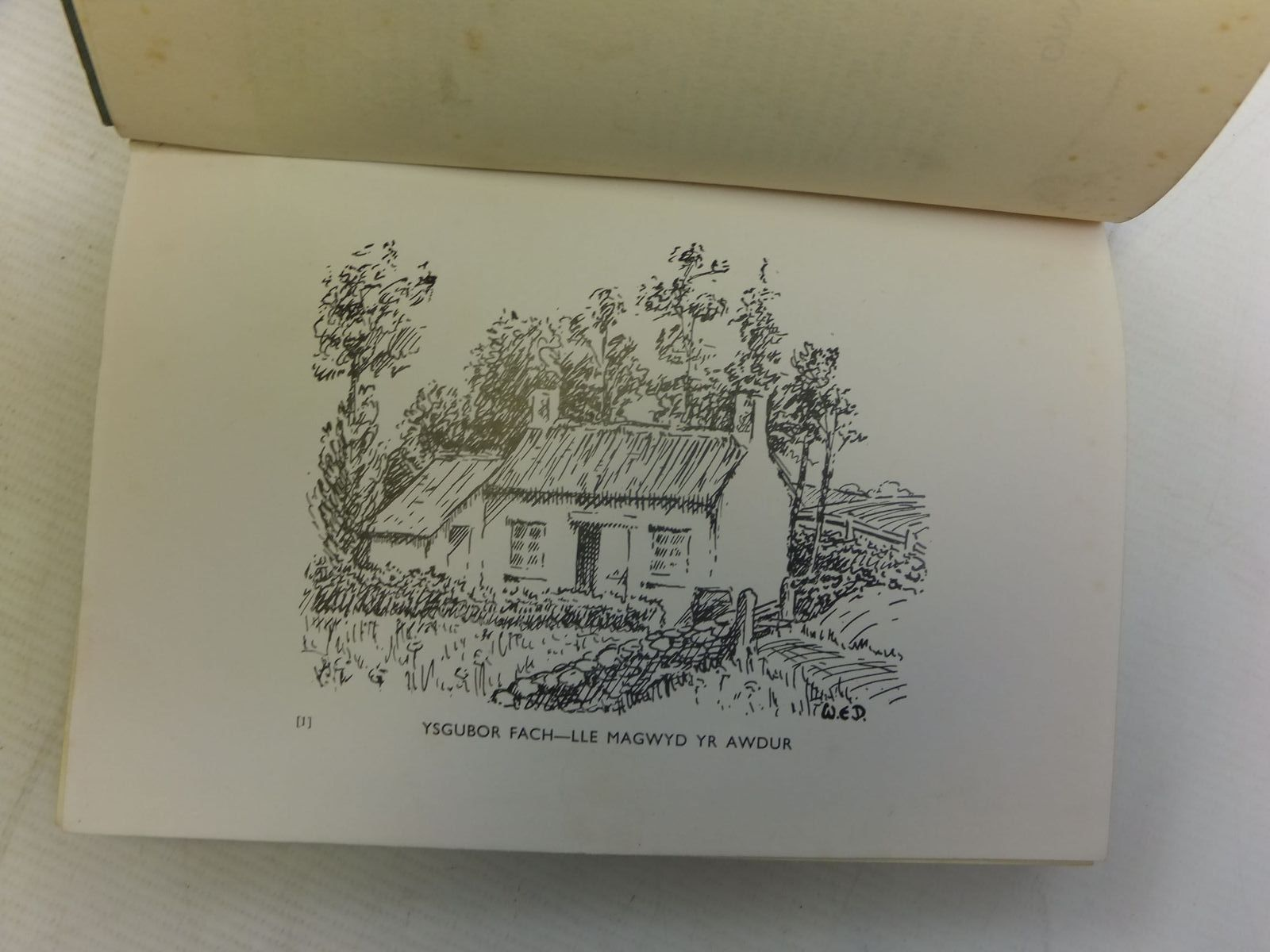 Photo of SENEDDWR AR DRAMP written by Davies, Rhys J. published by Hugh Evans (STOCK CODE: 1712831)  for sale by Stella & Rose's Books