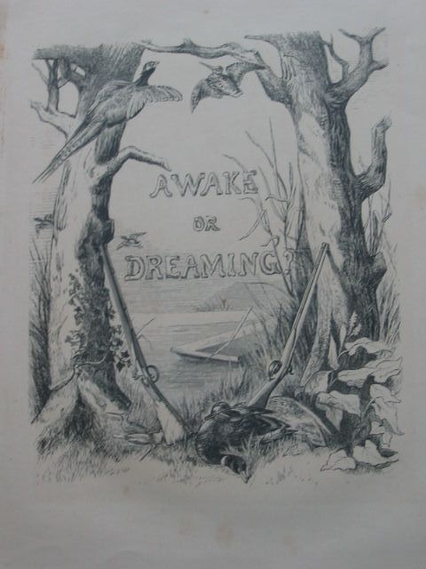 Photo of AWAKE OR DREAMING? A DOG'S STORY written by Brothers Wagtail,  illustrated by Brothers Wagtail,  published by Day And Son Limited (STOCK CODE: 1801125)  for sale by Stella & Rose's Books