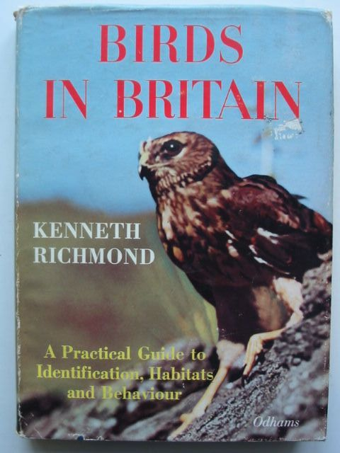 Photo of BIRDS IN BRITAIN written by Richmond, Kenneth published by Odhams Press Limited (STOCK CODE: 1801182)  for sale by Stella & Rose's Books