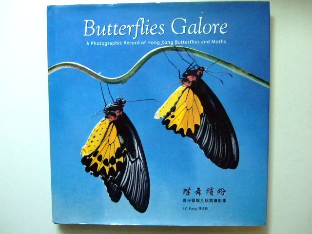 Photo of BUTTERFLIES GALORE written by Fung, S.C. published by S.C.Fung (STOCK CODE: 1803008)  for sale by Stella & Rose's Books
