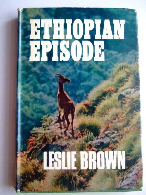 Photo of ETHIOPIAN EPISODE- Stock Number: 1803556