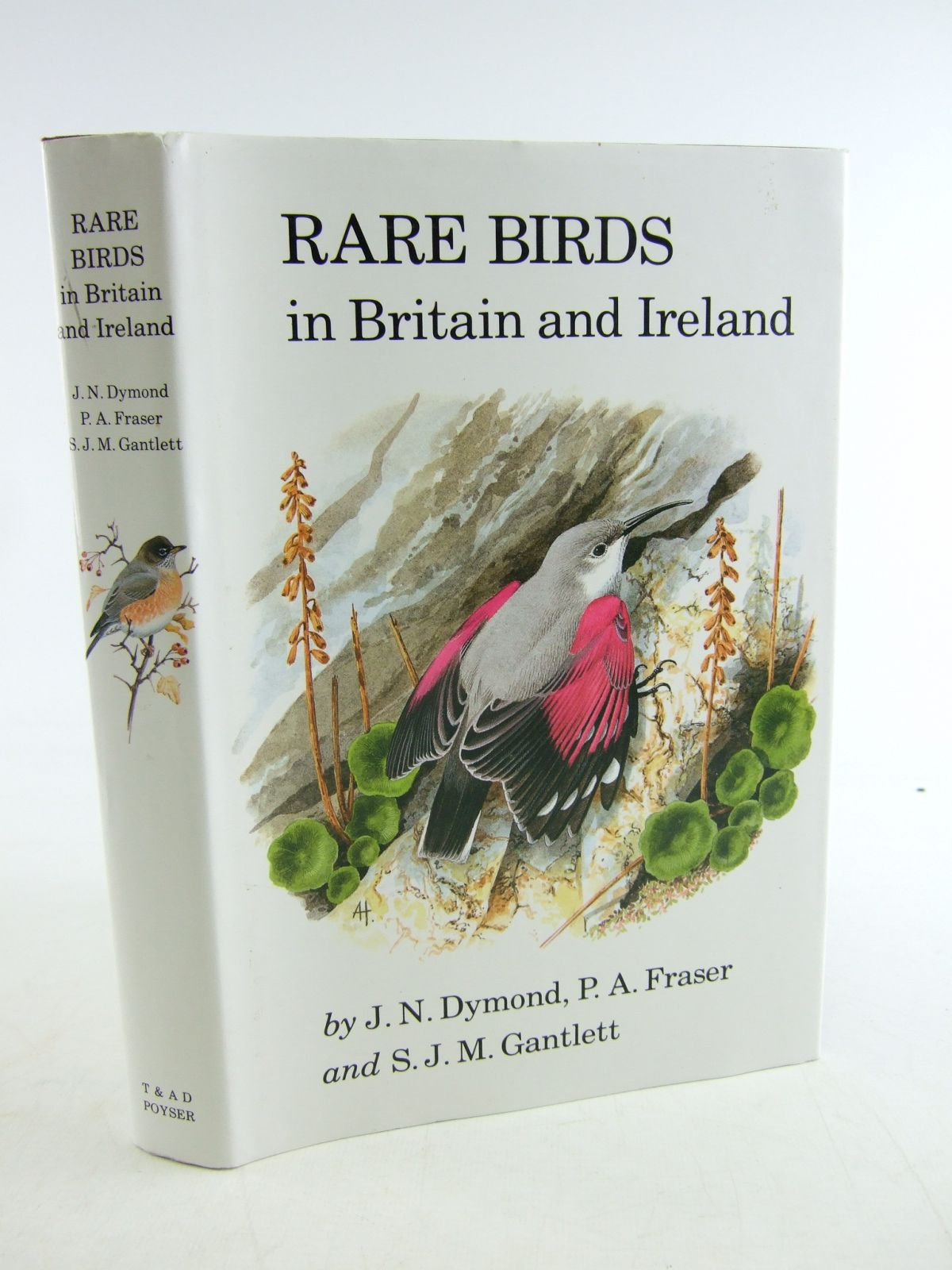 Photo of RARE BIRDS IN BRITAIN AND IRELAND written by Dymond, J.N. Fraser, P.A. Gantlett, S.J.M. published by T. & A.D. Poyser (STOCK CODE: 1806349)  for sale by Stella & Rose's Books