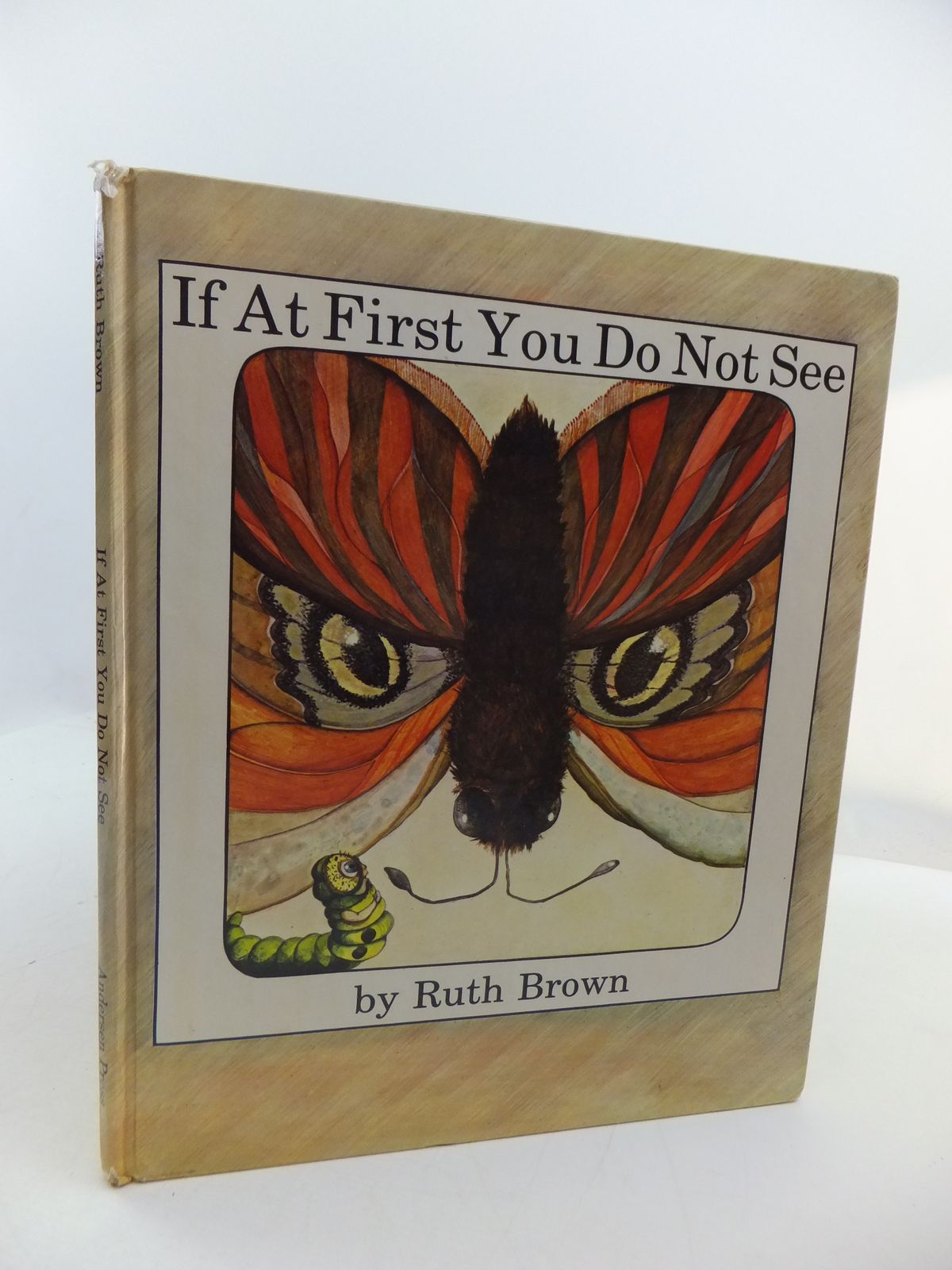 Photo of IF AT FIRST YOU DO NOT SEE written by Brown, Ruth illustrated by Brown, Ruth published by Andersen Press (STOCK CODE: 1807947)  for sale by Stella & Rose's Books