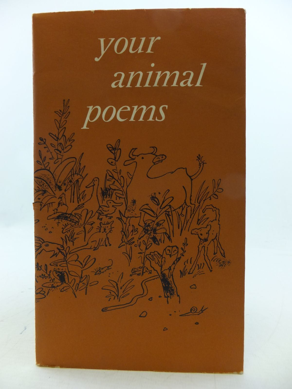 Photo of YOUR ANIMAL POEMS- Stock Number: 1808539