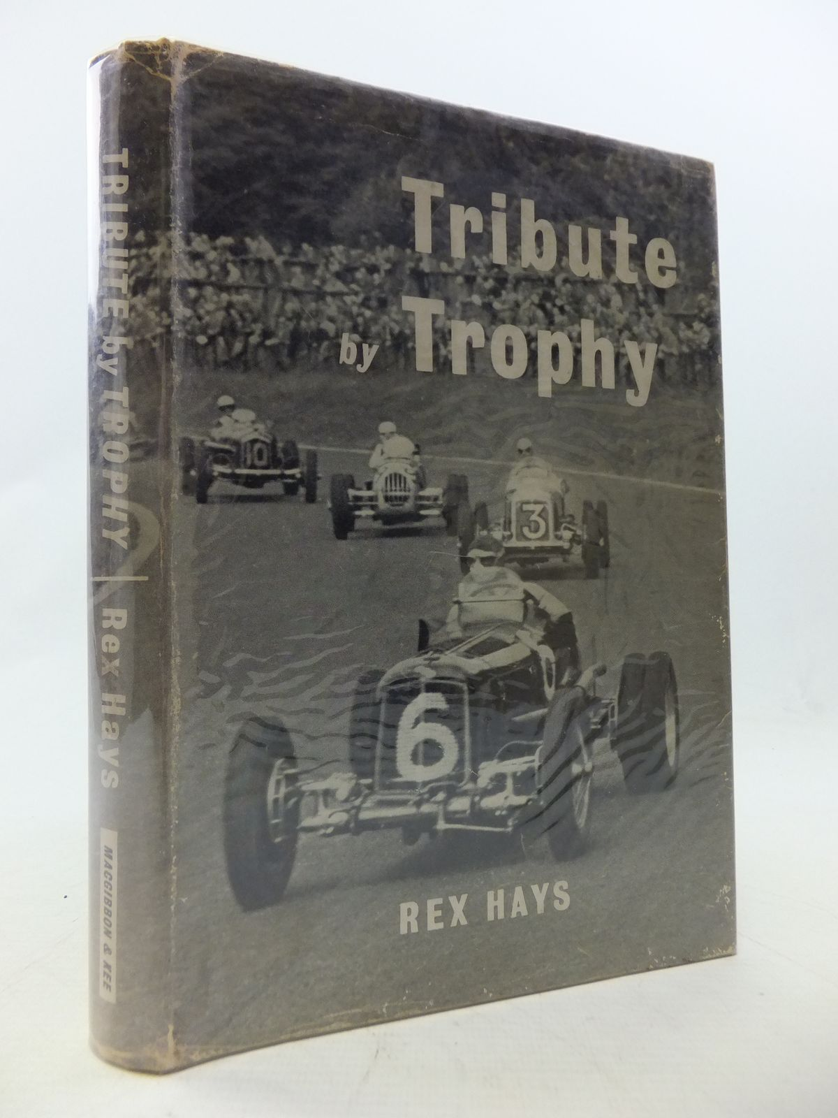 Photo of TRIBUTE BY TROPHY- Stock Number: 1808965