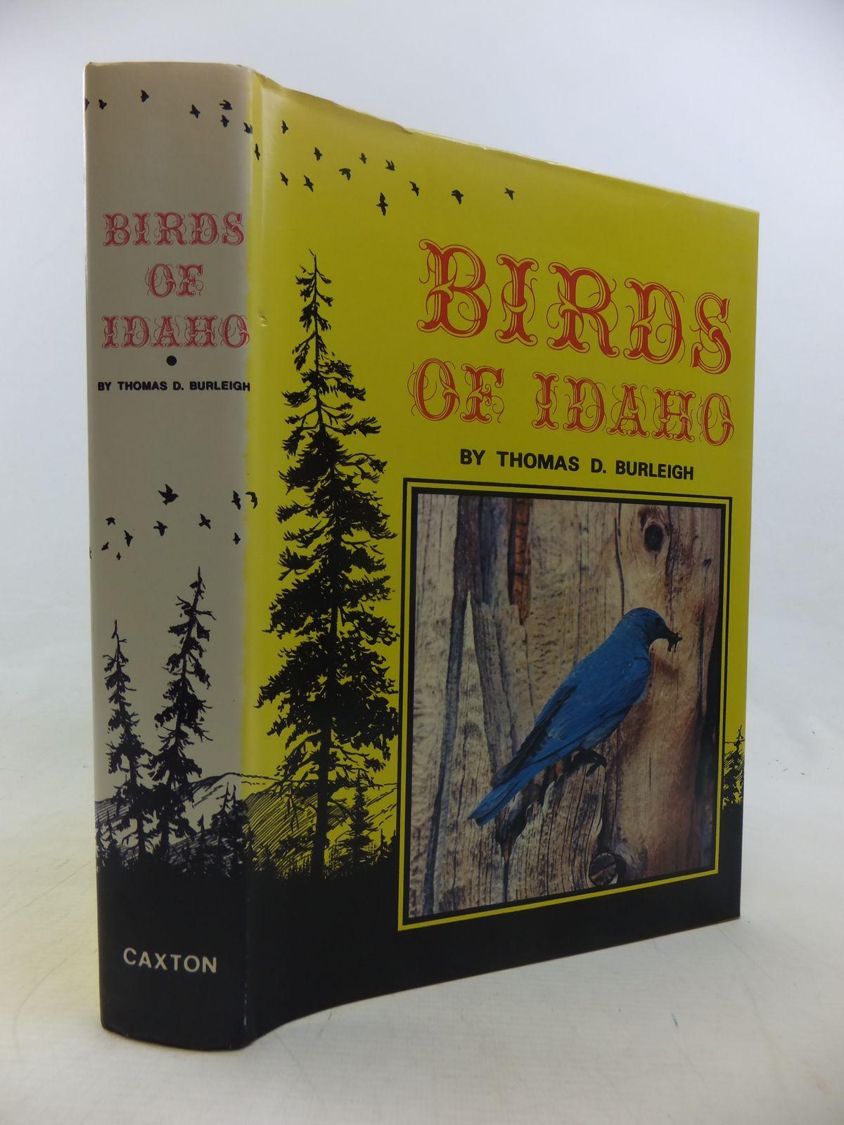 Photo of BIRDS OF IDAHO- Stock Number: 1811170