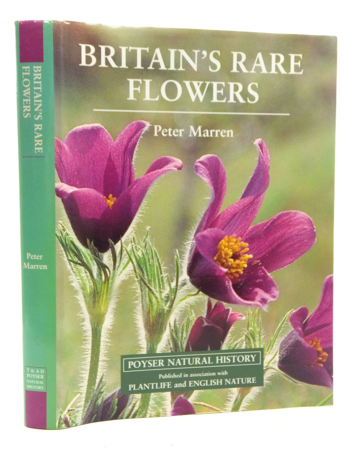 Photo of BRITAIN'S RARE FLOWERS- Stock Number: 1814319
