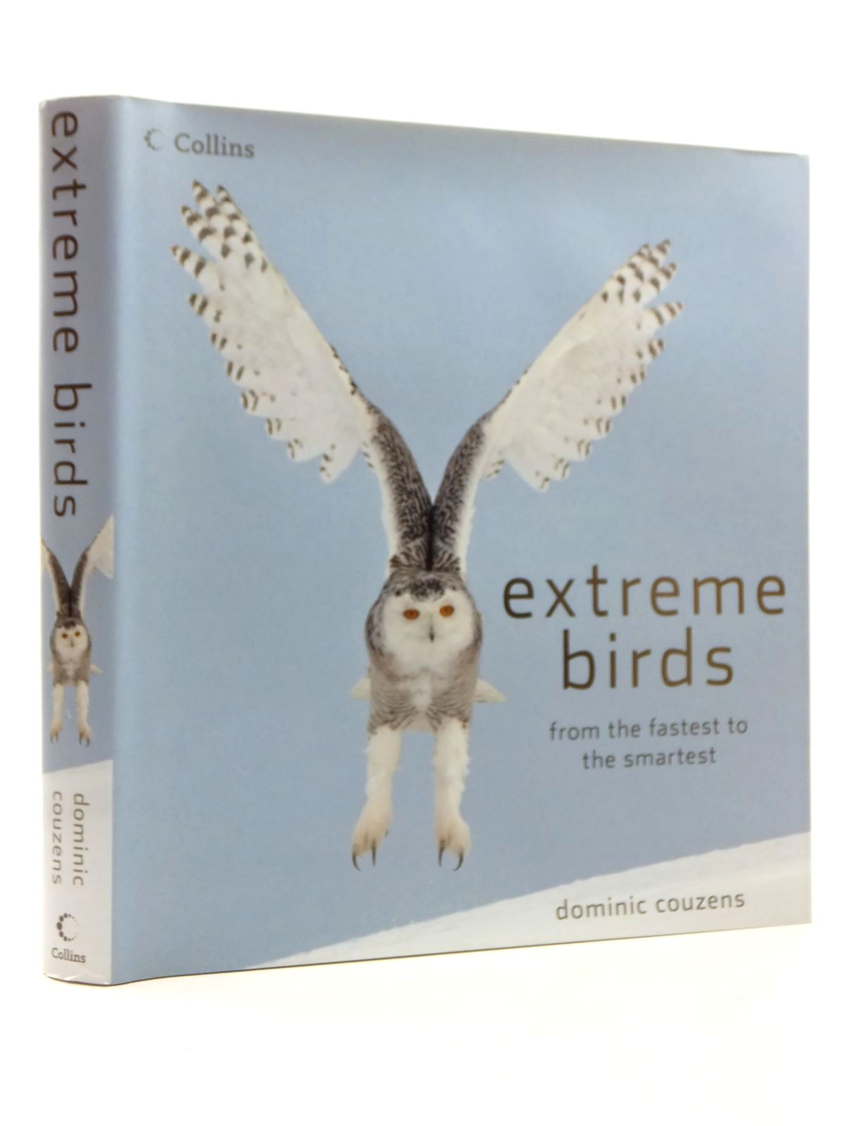 Photo of EXTREME BIRDS- Stock Number: 1814914