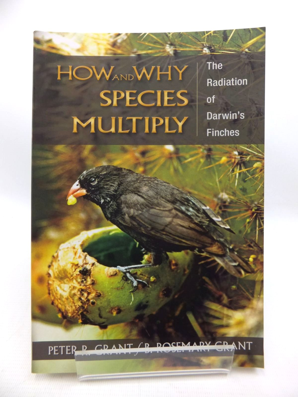 Photo of HOW AND WHY SPECIES MULTIPLY: THE RADIATION OF DARWIN'S FINCHES- Stock Number: 1815192