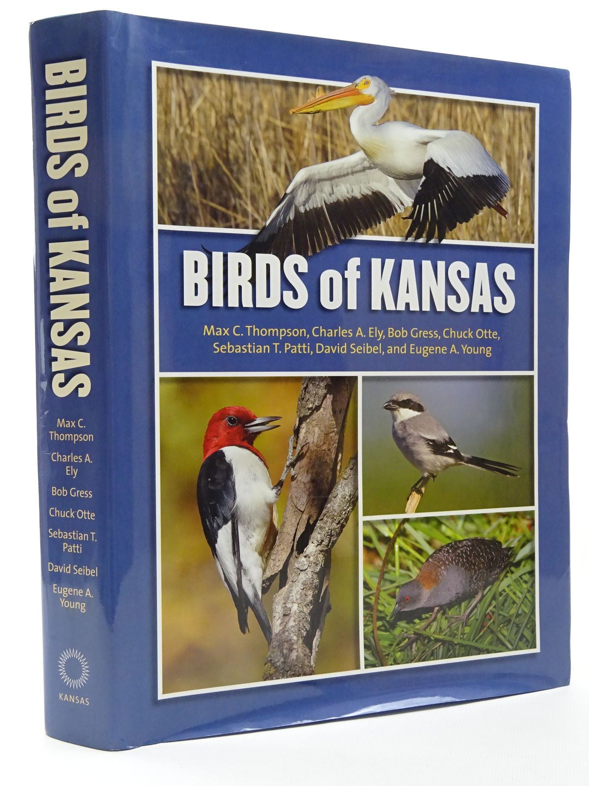 Photo of BIRDS OF KANSAS written by Thompson, Max C. Ely, Charles A. et al, published by University Press Of Kansas (STOCK CODE: 1815603)  for sale by Stella & Rose's Books