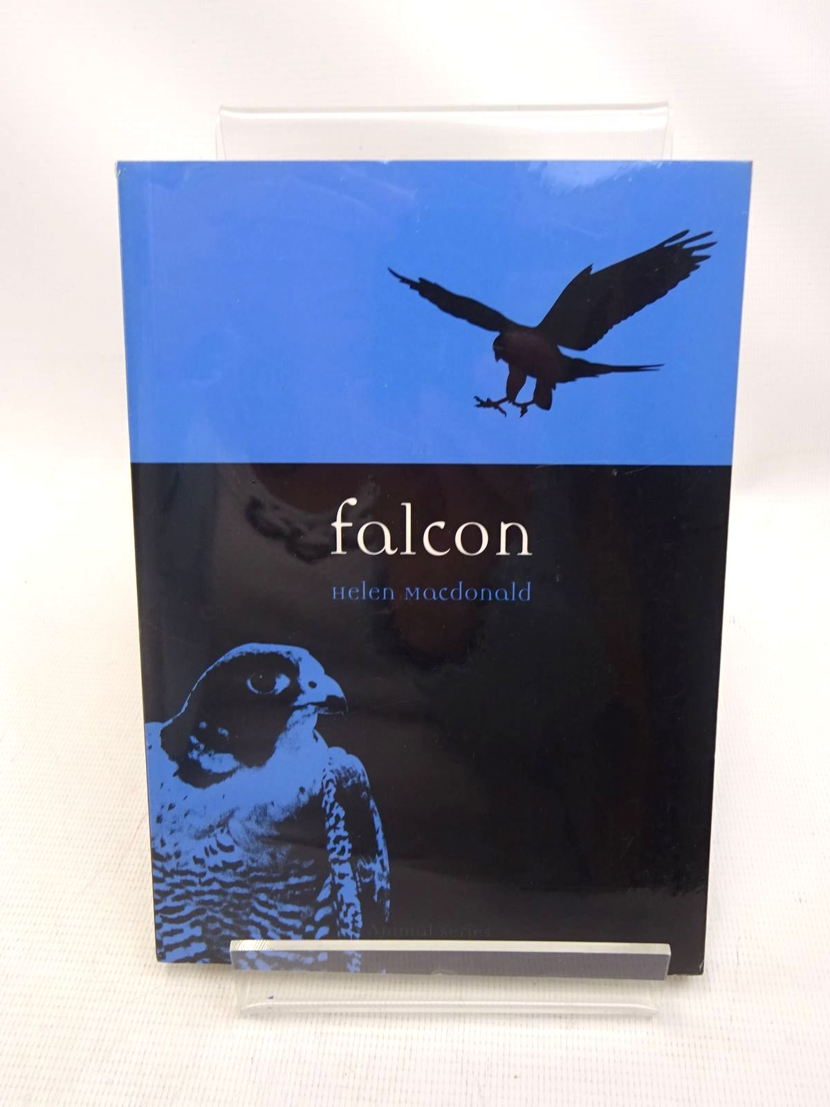 Photo of FALCON- Stock Number: 1816661