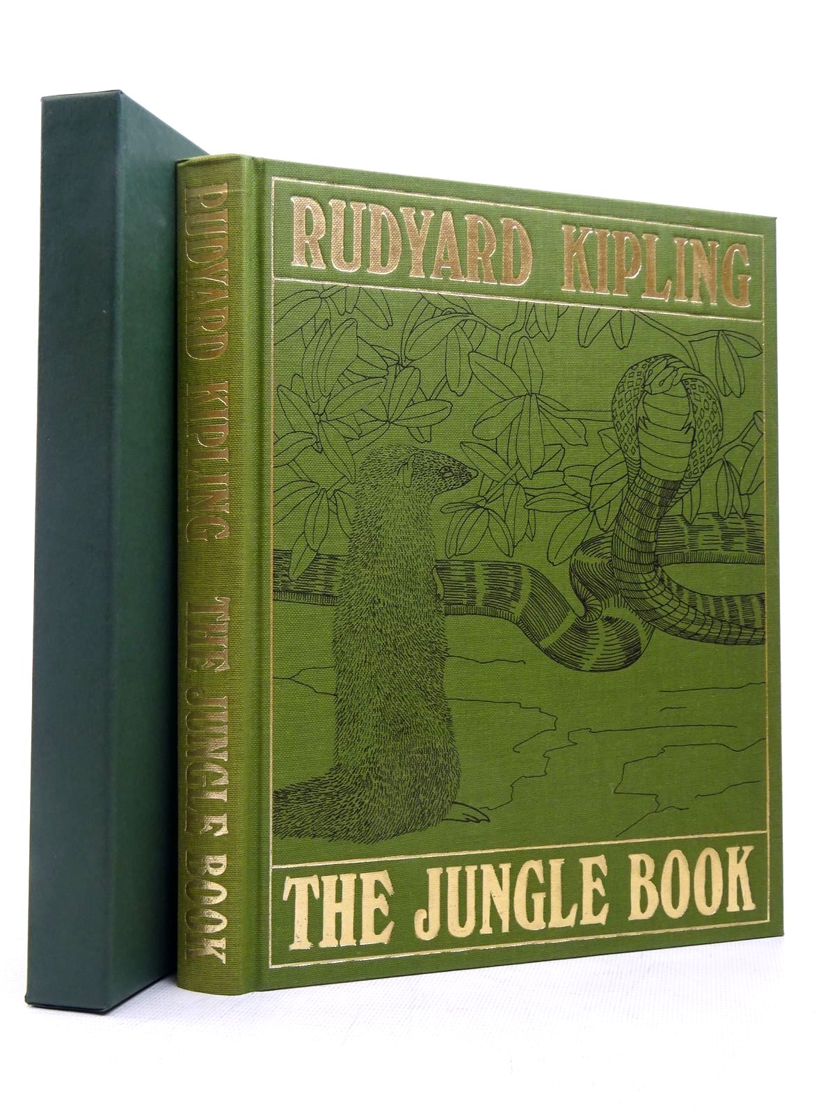 Photo of THE JUNGLE BOOK written by Kipling, Rudyard illustrated by Detmold, Maurice