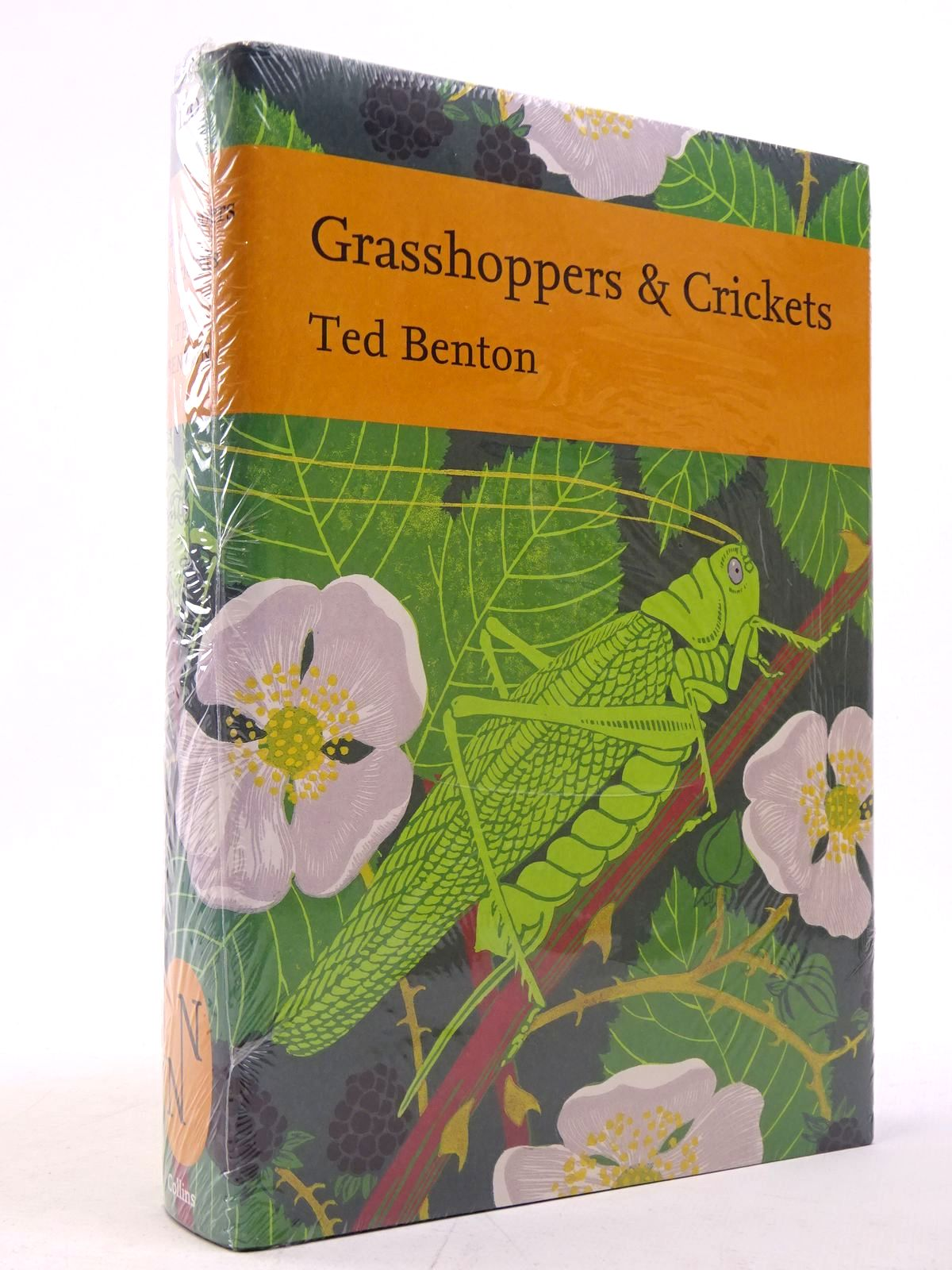 Photo of GRASSHOPPERS & CRICKETS (NN120) written by Benton, Ted published by Collins (STOCK CODE: 1817552)  for sale by Stella & Rose's Books