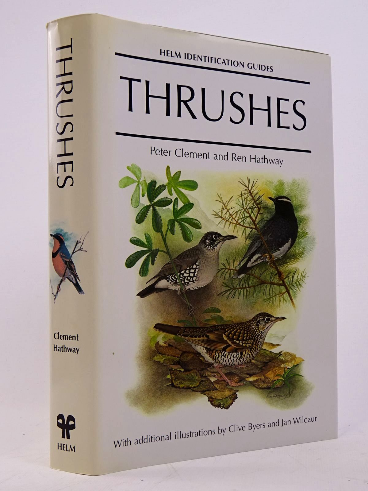 Photo of THRUSHES (HELM IDENTIFICATION GUIDES) written by Clement, Peter<br />Hathway, Ren illustrated by Byers, Clive<br />Wilczur, Jan published by Christopher Helm (STOCK CODE: 1817569)  for sale by Stella & Rose's Books