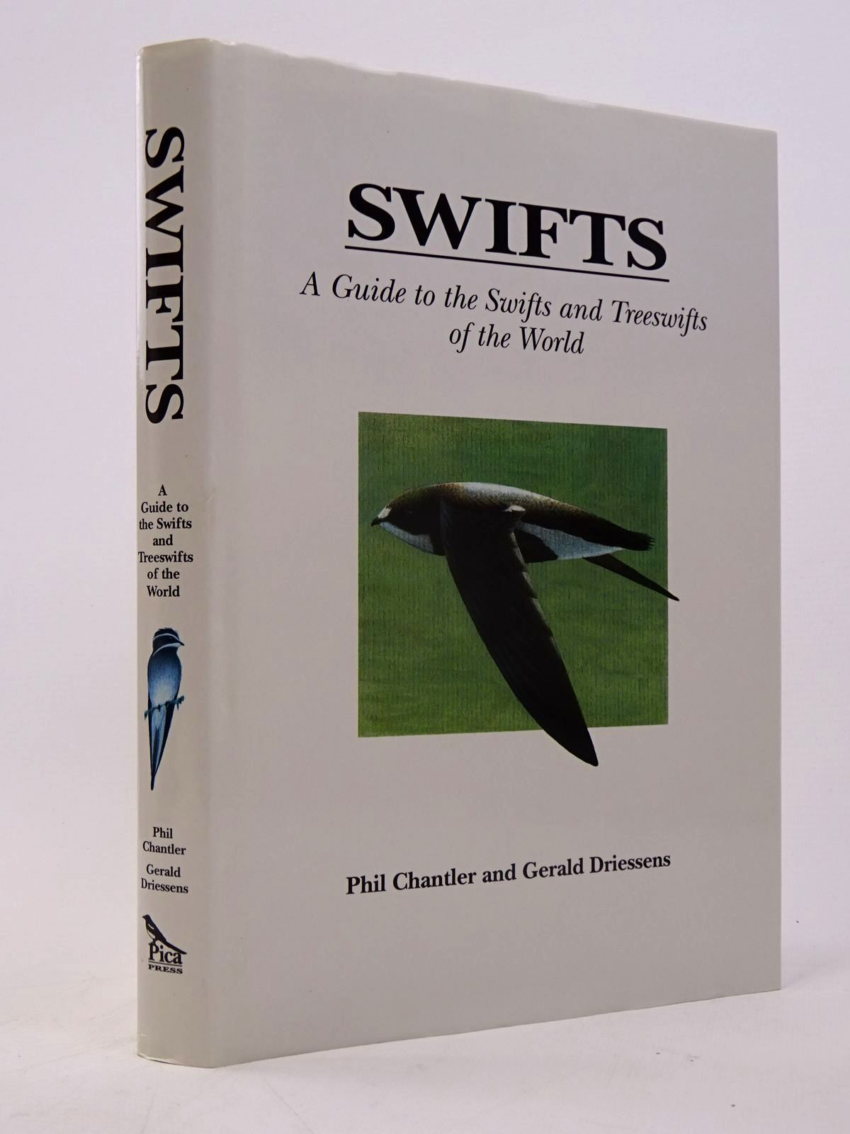 Photo of SWIFTS- Stock Number: 1817574