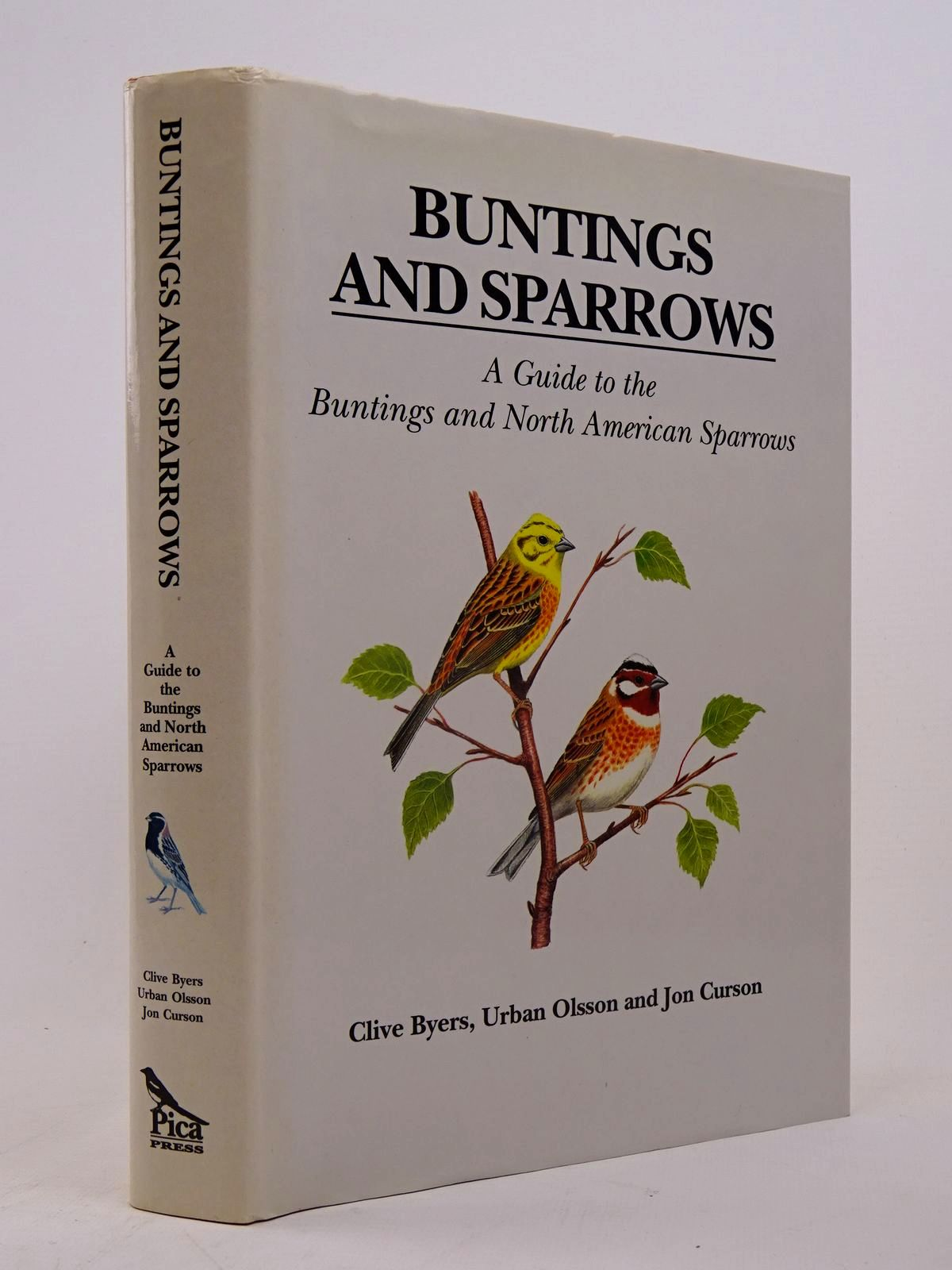 Photo of BUNTINGS AND SPARROWS- Stock Number: 1817579