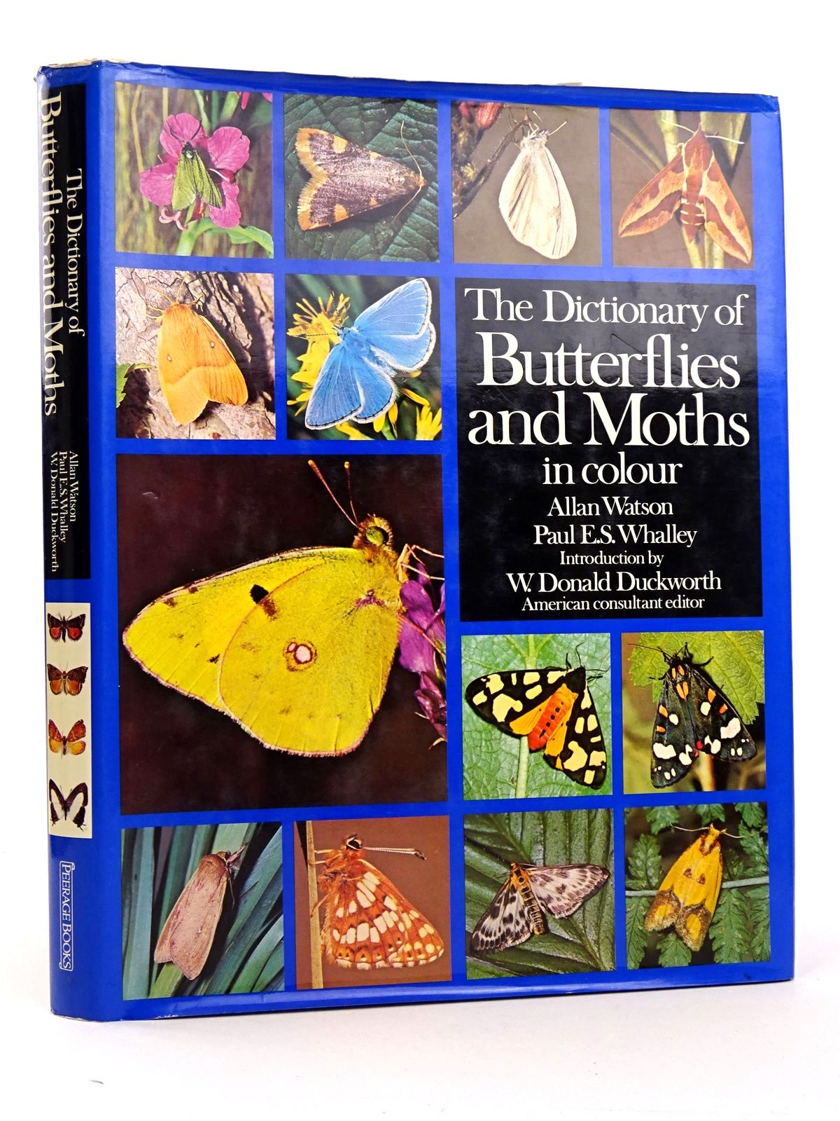 Photo of THE DICTIONARY OF BUTTERFLIES AND MOTHS IN COLOUR- Stock Number: 1818342