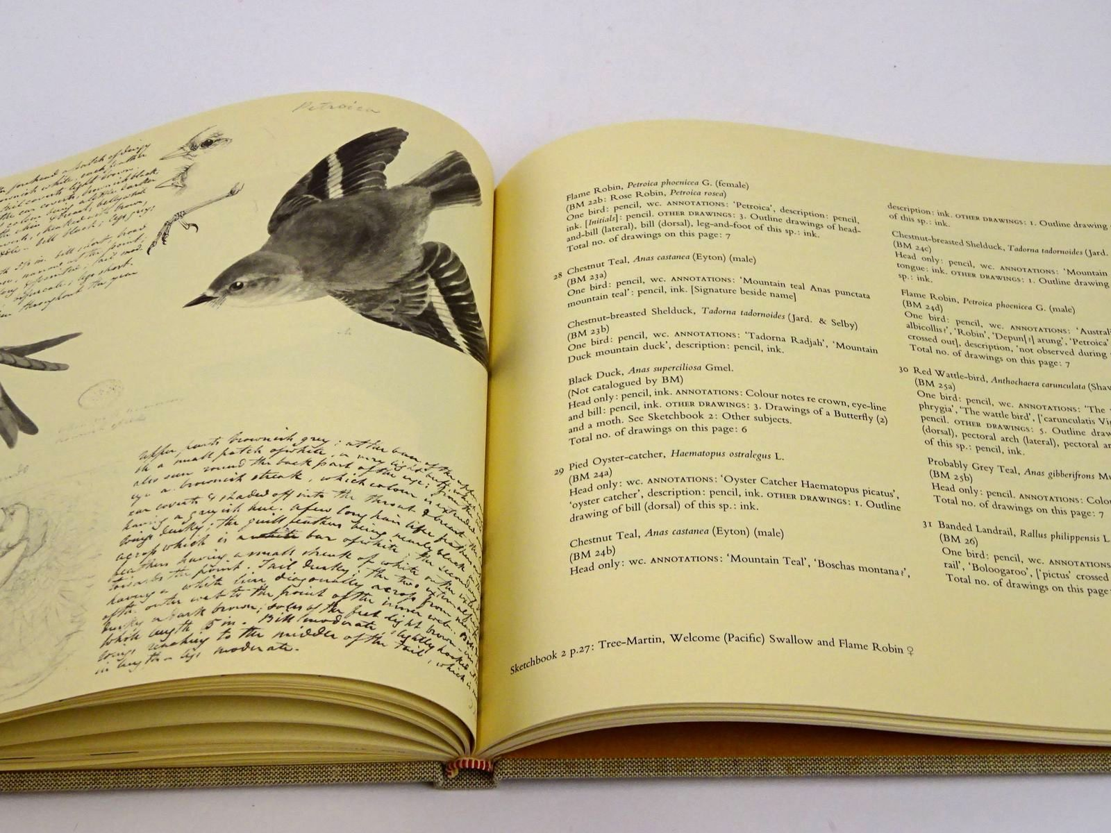 Photo of JOHN COTTON'S BIRDS OF THE PORT PHILLIP DISTRICT OF NEW SOUTH WALES 1843-1849 written by Mcevey, Allan illustrated by Cotton, John published by Collins (STOCK CODE: 1818350)  for sale by Stella & Rose's Books
