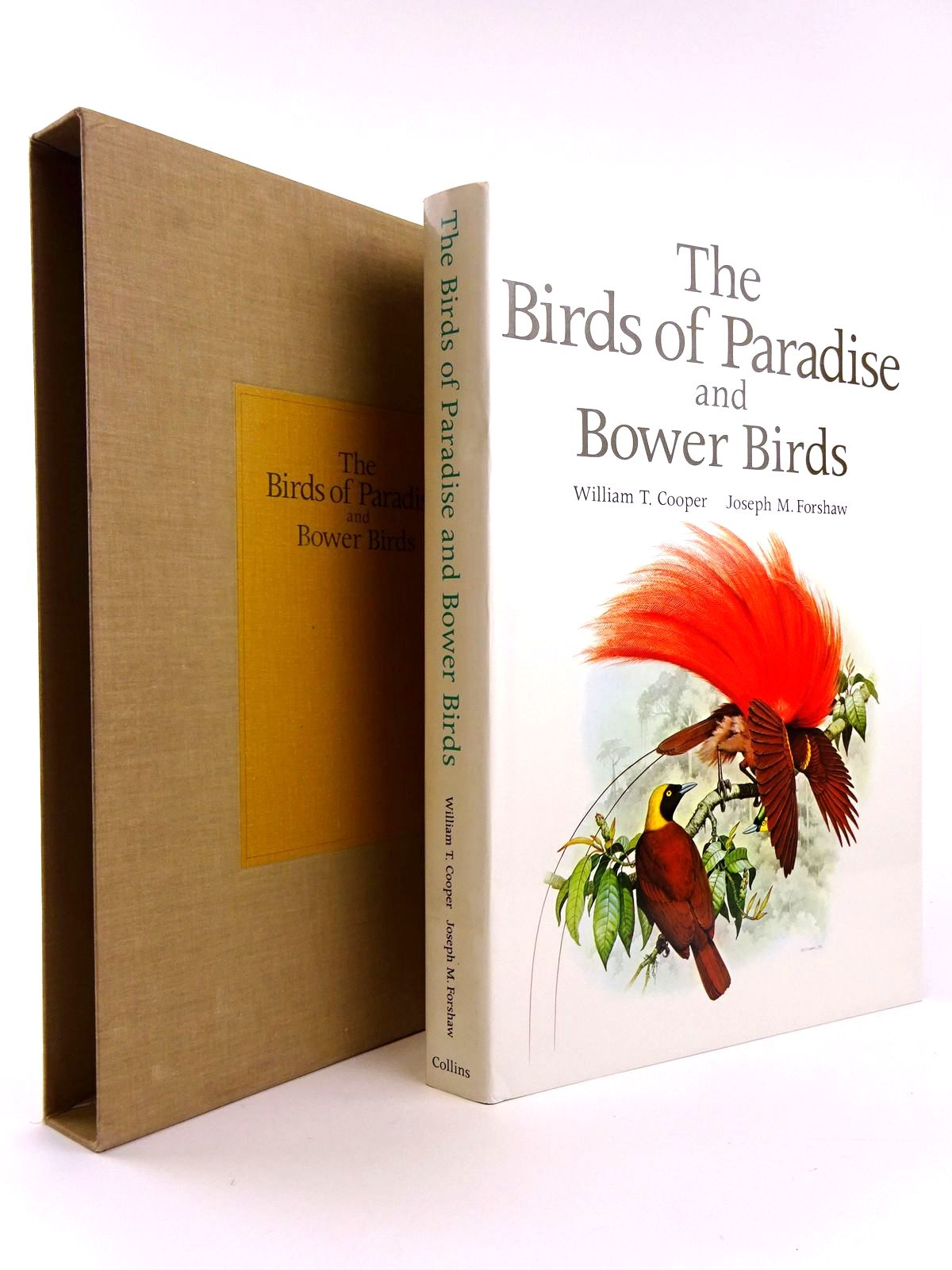 Photo of THE BIRDS OF PARADISE AND BOWER BIRDS- Stock Number: 1818360