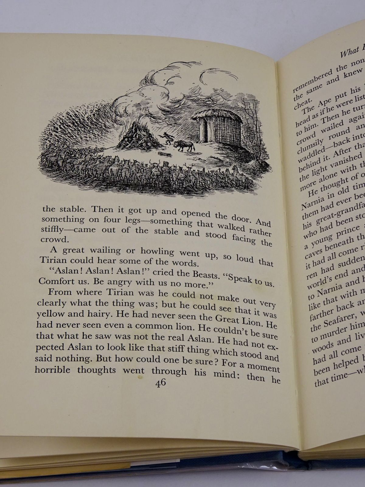 Photo of THE LAST BATTLE written by Lewis, C.S. illustrated by Baynes, Pauline published by The Bodley Head (STOCK CODE: 1818591)  for sale by Stella & Rose's Books