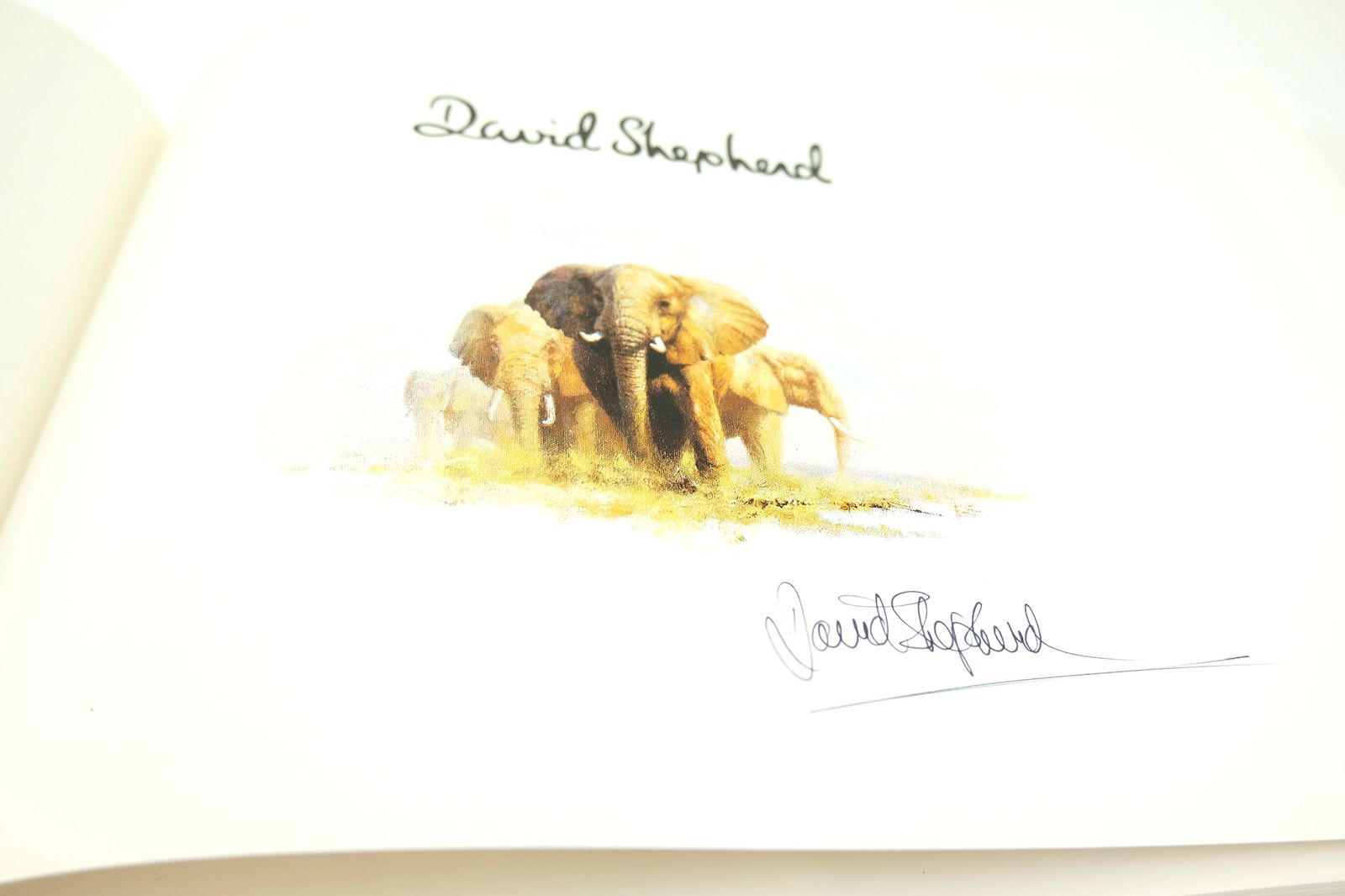 Photo of DAVID SHEPHERD THE MAN AND HIS PAINTINGS written by Shepherd, David illustrated by Shepherd, David published by David & Charles (STOCK CODE: 1818685)  for sale by Stella & Rose's Books
