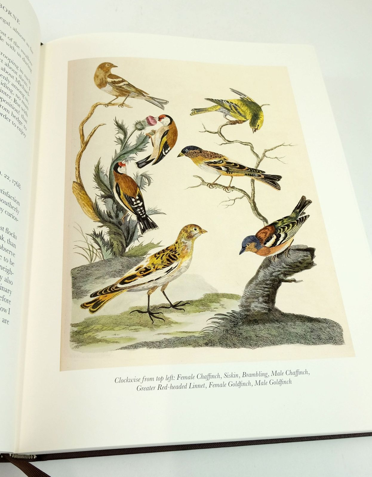 Photo of THE NATURAL HISTORY OF SELBORNE written by White, Gilbert