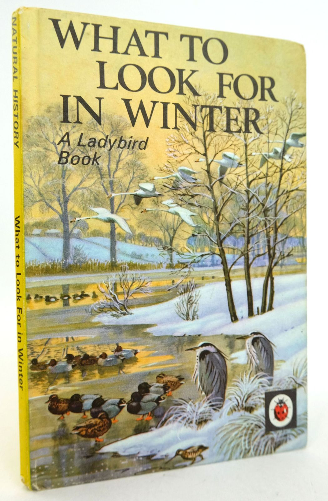 Photo of WHAT TO LOOK FOR IN WINTER written by Watson, E.L. Grant illustrated by Tunnicliffe, C.F. published by Wills & Hepworth Ltd. (STOCK CODE: 1819193)  for sale by Stella & Rose's Books