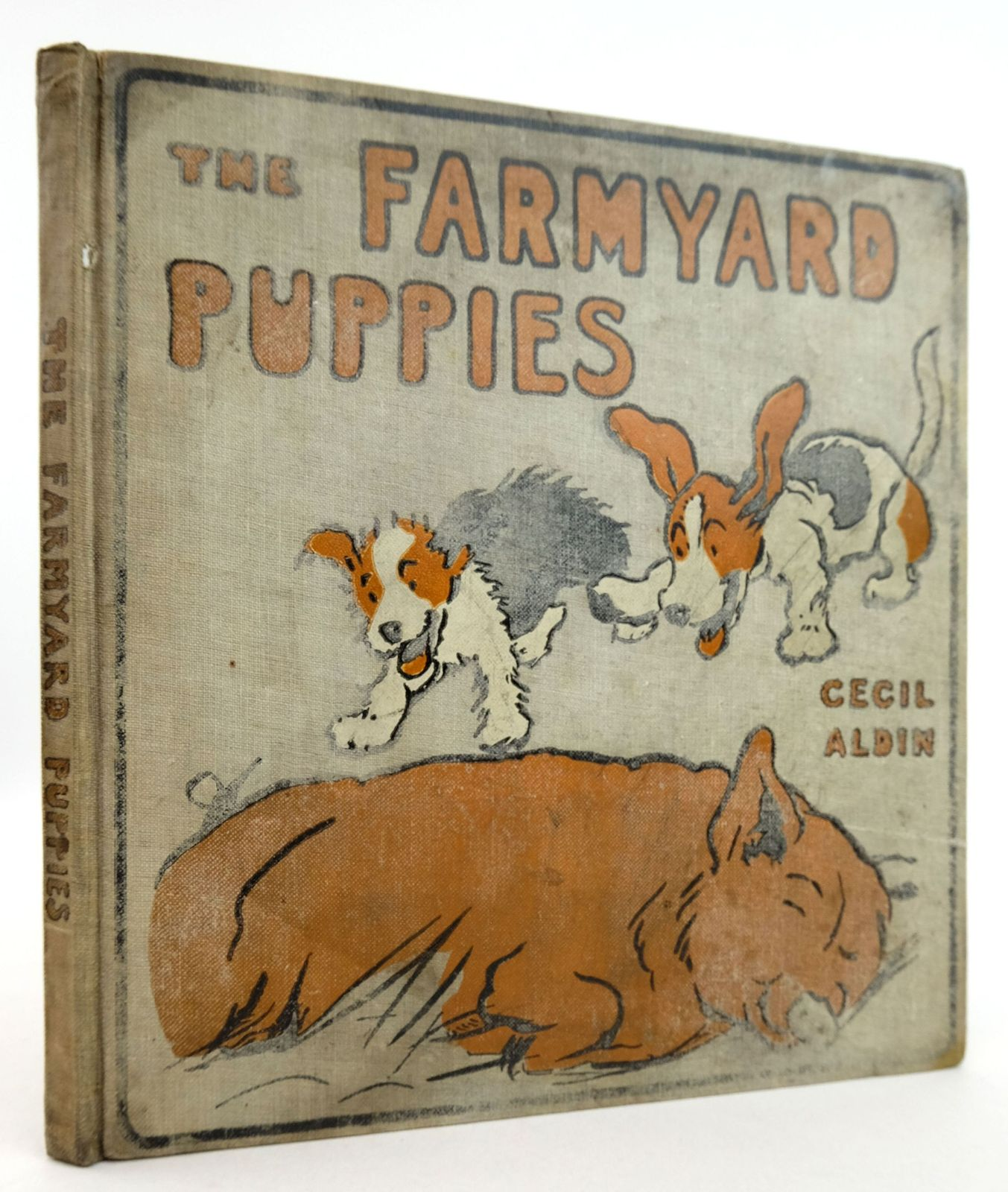 Photo of FARM YARD PUPPIES- Stock Number: 1819647