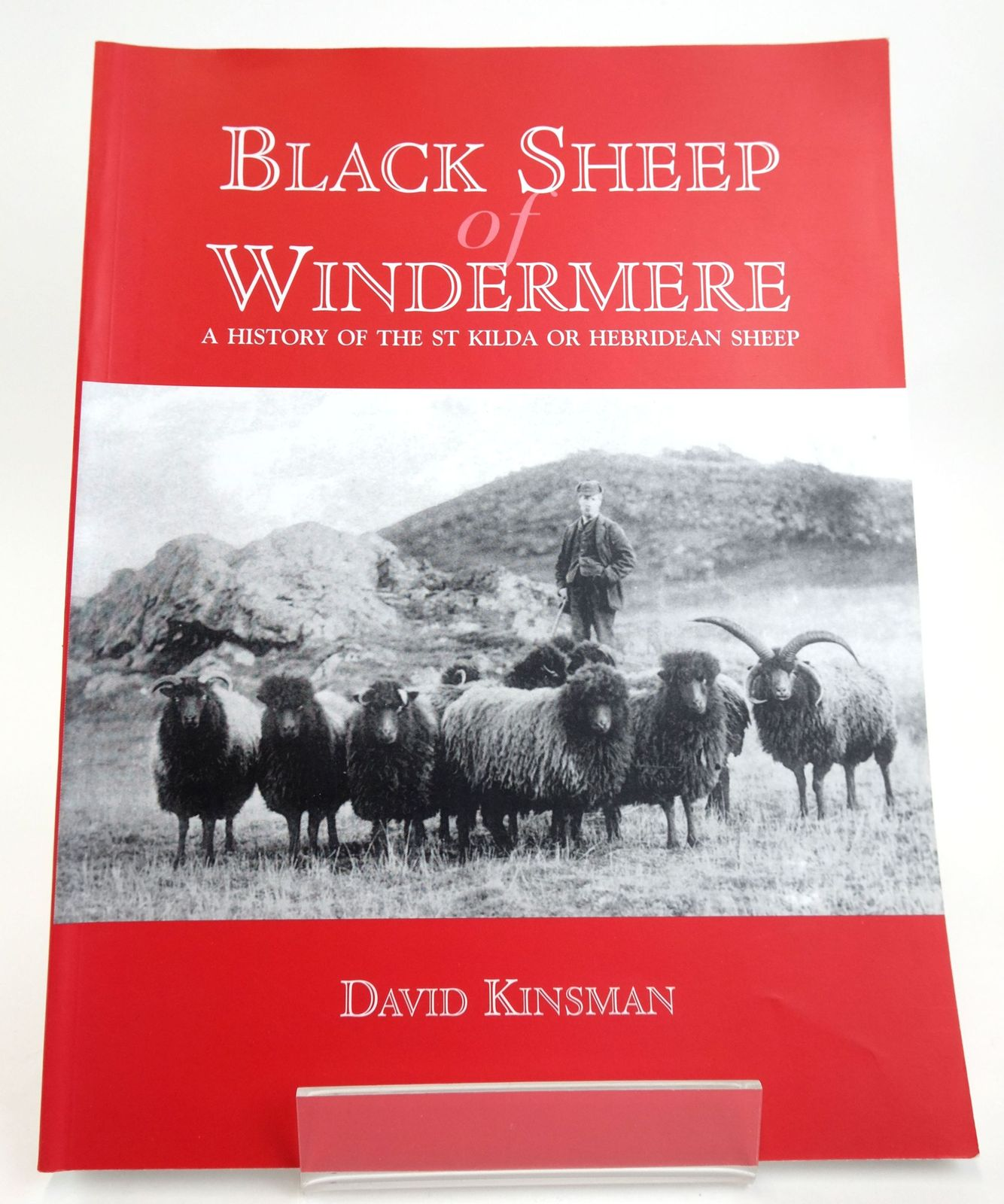 Photo of BLACK SHEEP OF WINDERMERE: A HISTORY OF THE ST KILDA OR HEBRIDEAN SHEEP written by Kinsman, David published by Windy Hall Publications (STOCK CODE: 1820092)  for sale by Stella & Rose's Books