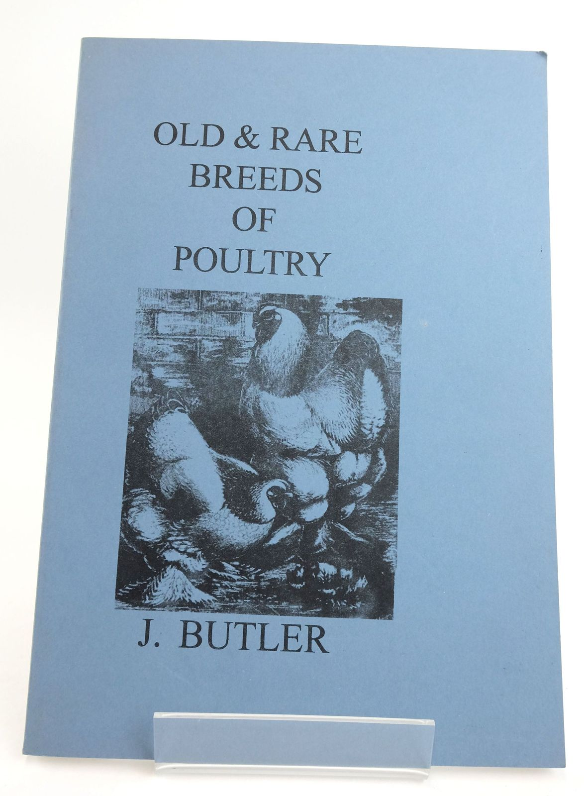 Photo of OLD & RARE BREEDS OF POULTRY- Stock Number: 1820093