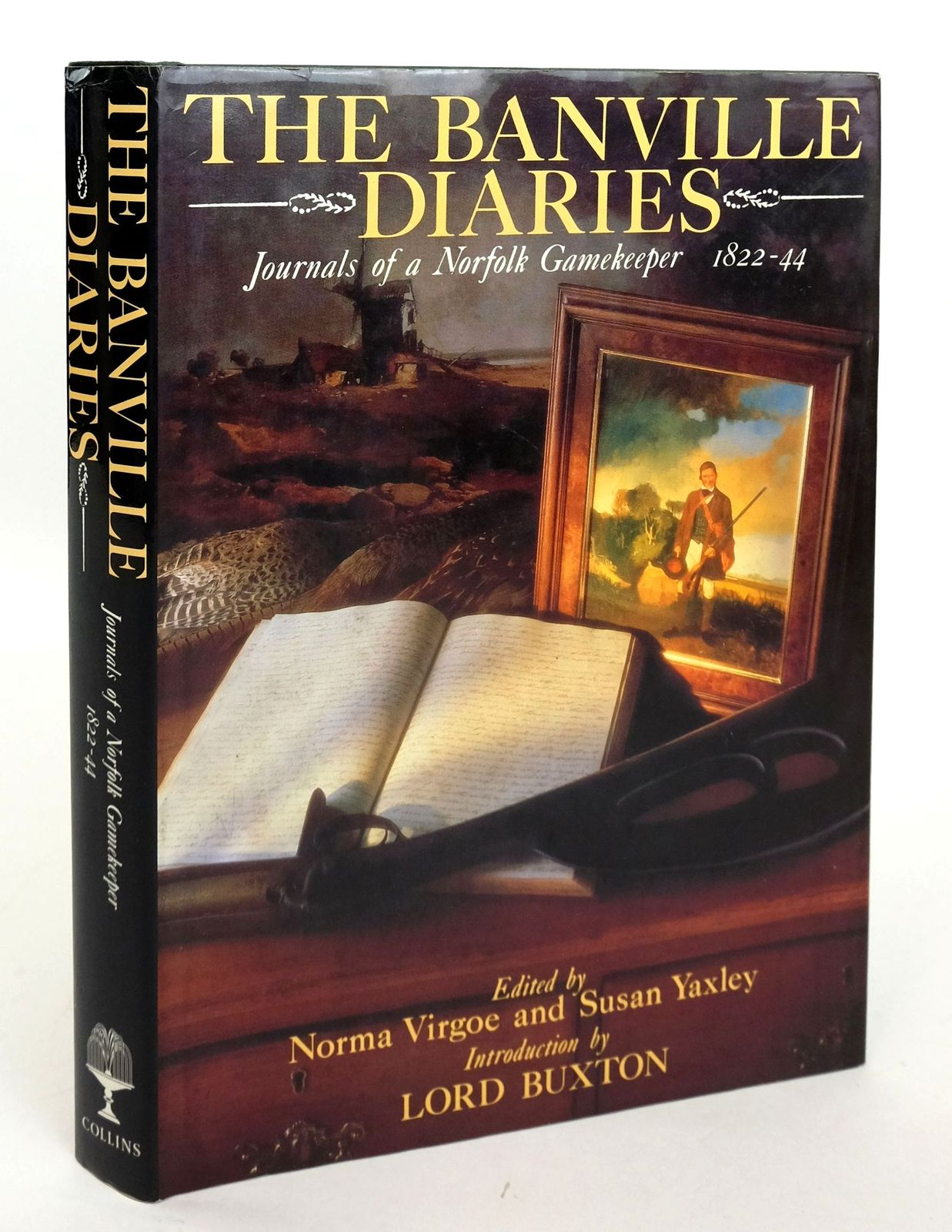 Photo of THE BANVILLE DIARIES- Stock Number: 1820176