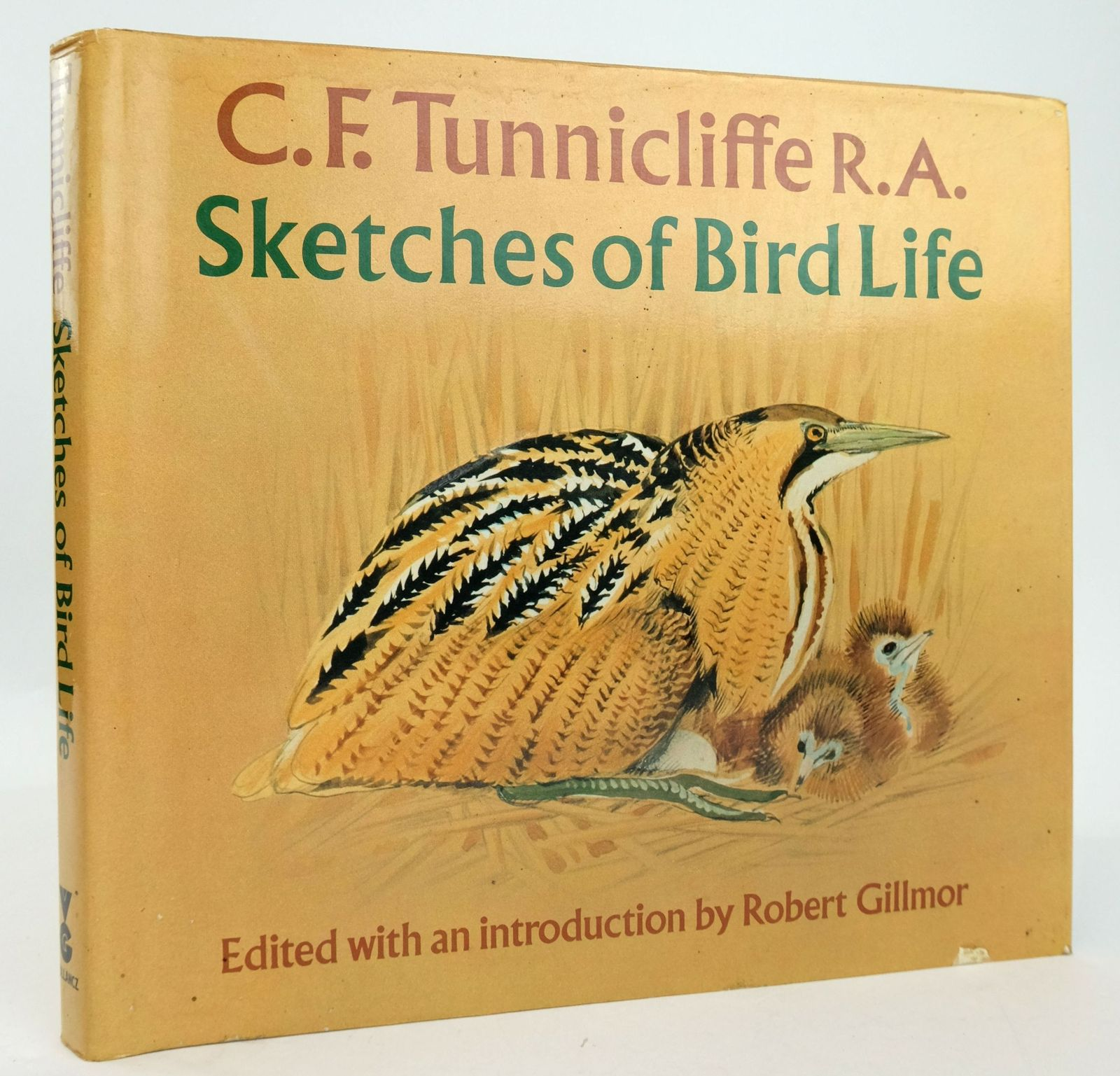 Photo of SKETCHES OF BIRD LIFE- Stock Number: 1820181