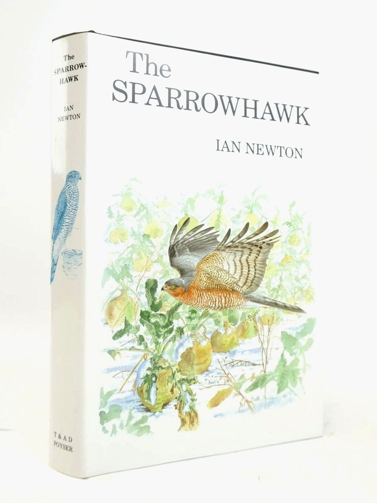 Photo of THE SPARROWHAWK- Stock Number: 1820529