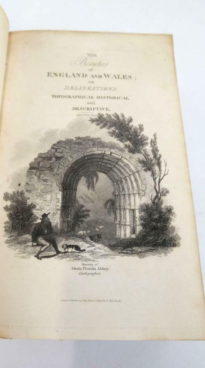 Photo of BEAUTIES OF ENGLAND AND WALES VOL. XVIII SOUTH WALES written by Rees, Thomas published by John Harris (STOCK CODE: 1821252)  for sale by Stella & Rose's Books