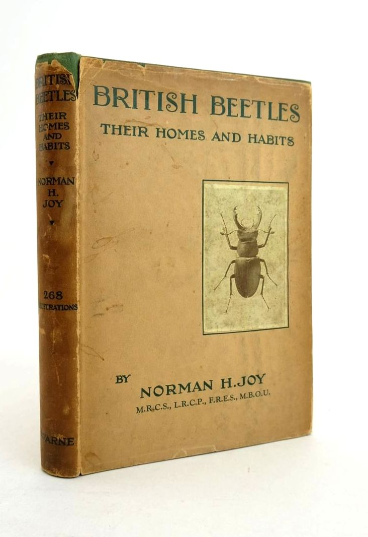Photo of BRITISH BEETLES THEIR HOMES AND HABITS- Stock Number: 1821266
