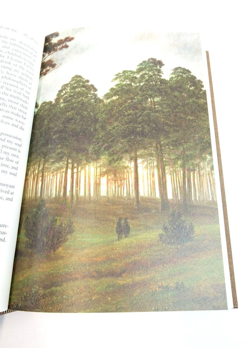 Photo of THE LAST MAN written by Shelley, Mary Hall, Sarah illustrated by Friedrich, Caspar David published by Folio Society (STOCK CODE: 1821525)  for sale by Stella & Rose's Books