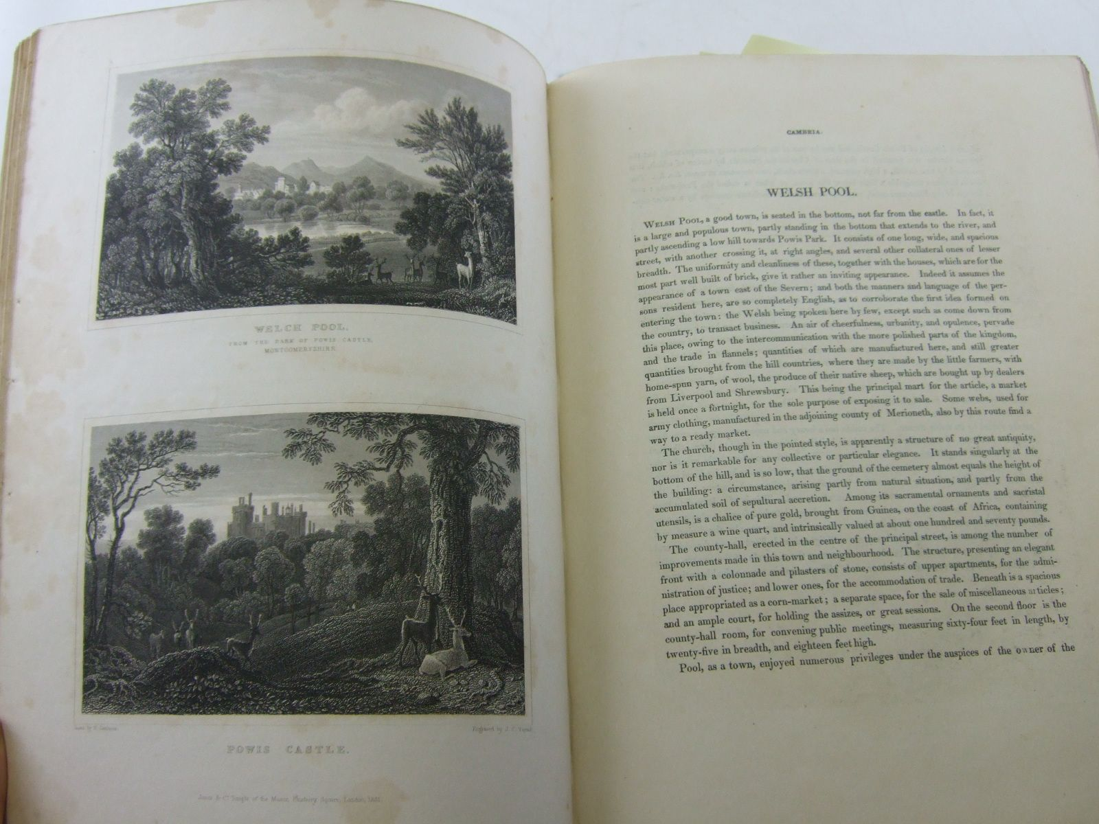 Photo of VIEWS IN WALES AND CUMBERLAND written by Gastineau, Henry published by Jones & Co (STOCK CODE: 2107047)  for sale by Stella & Rose's Books