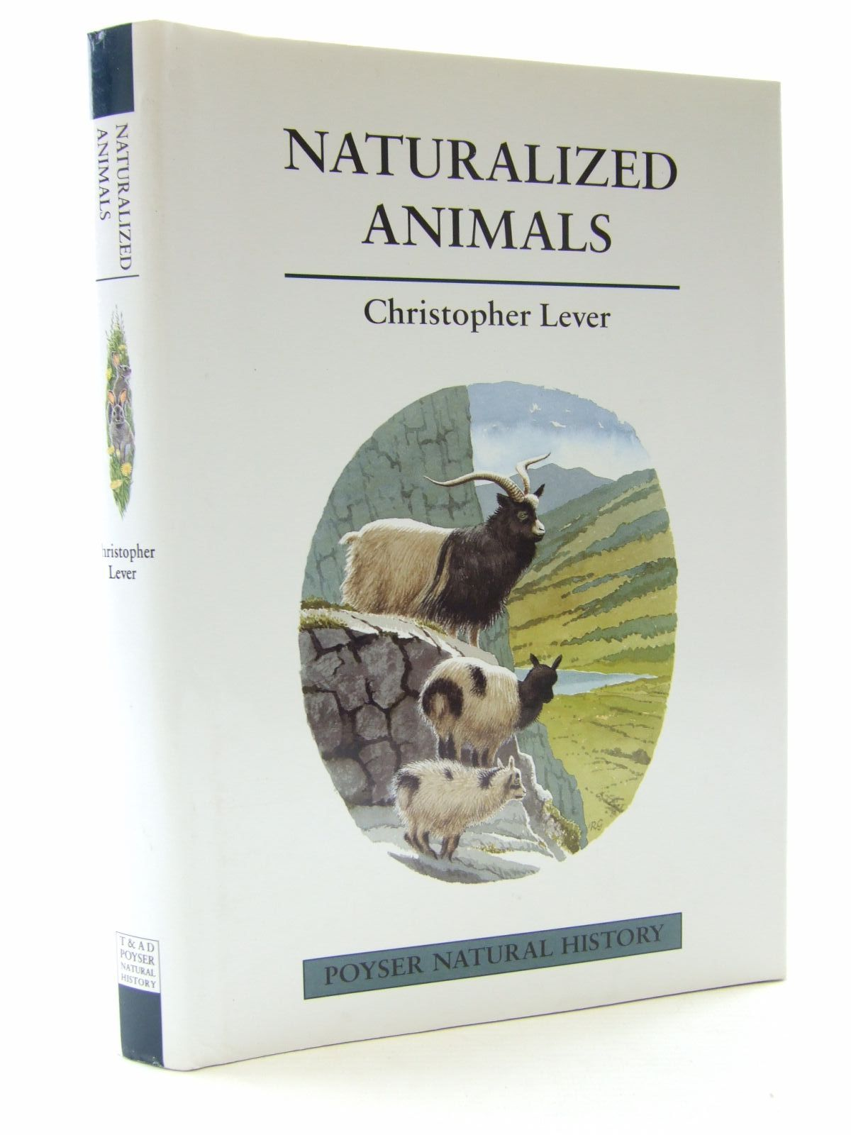 Photo of NATURALIZED ANIMALS: THE ECOLOGY OF SUCCESSFULLY INTRODUCED SPECIES written by Lever, Christopher illustrated by Gillmor, Robert published by T. & A.D. Poyser (STOCK CODE: 2108231)  for sale by Stella & Rose's Books