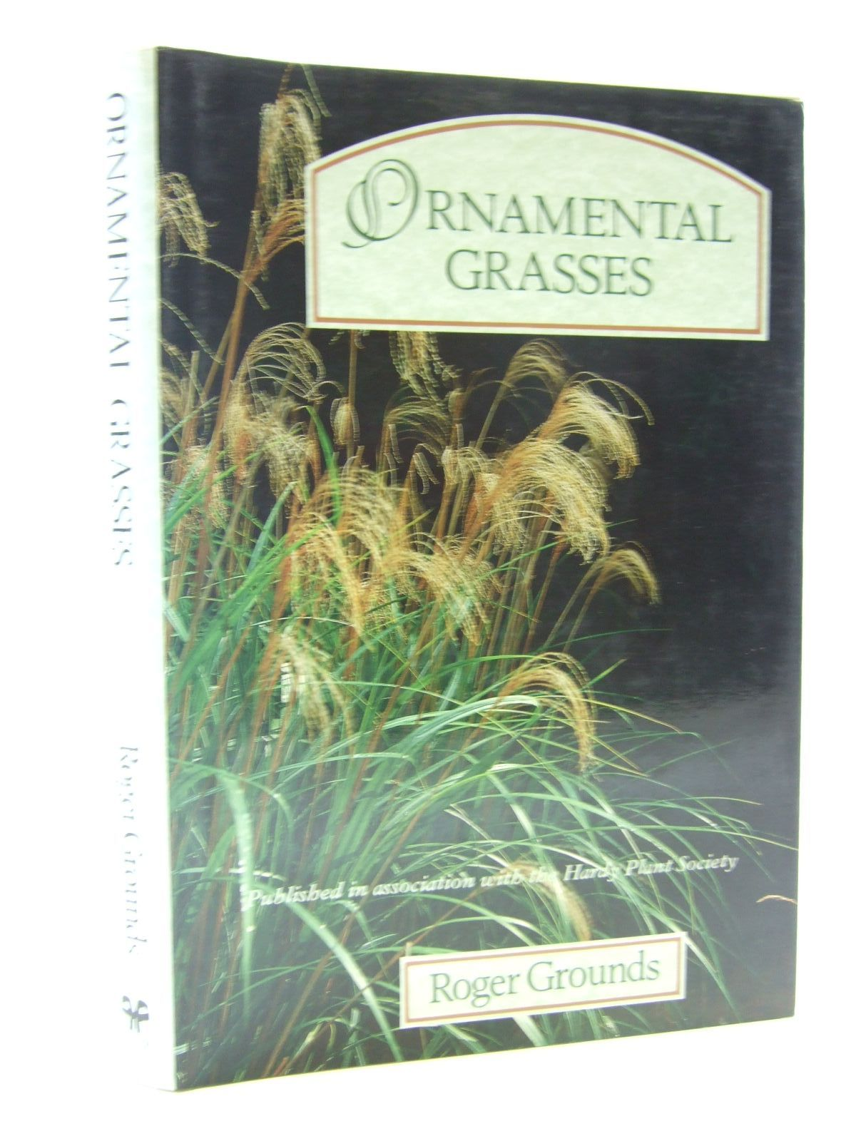 Photo of ORNAMENTAL GRASSES- Stock Number: 2108503
