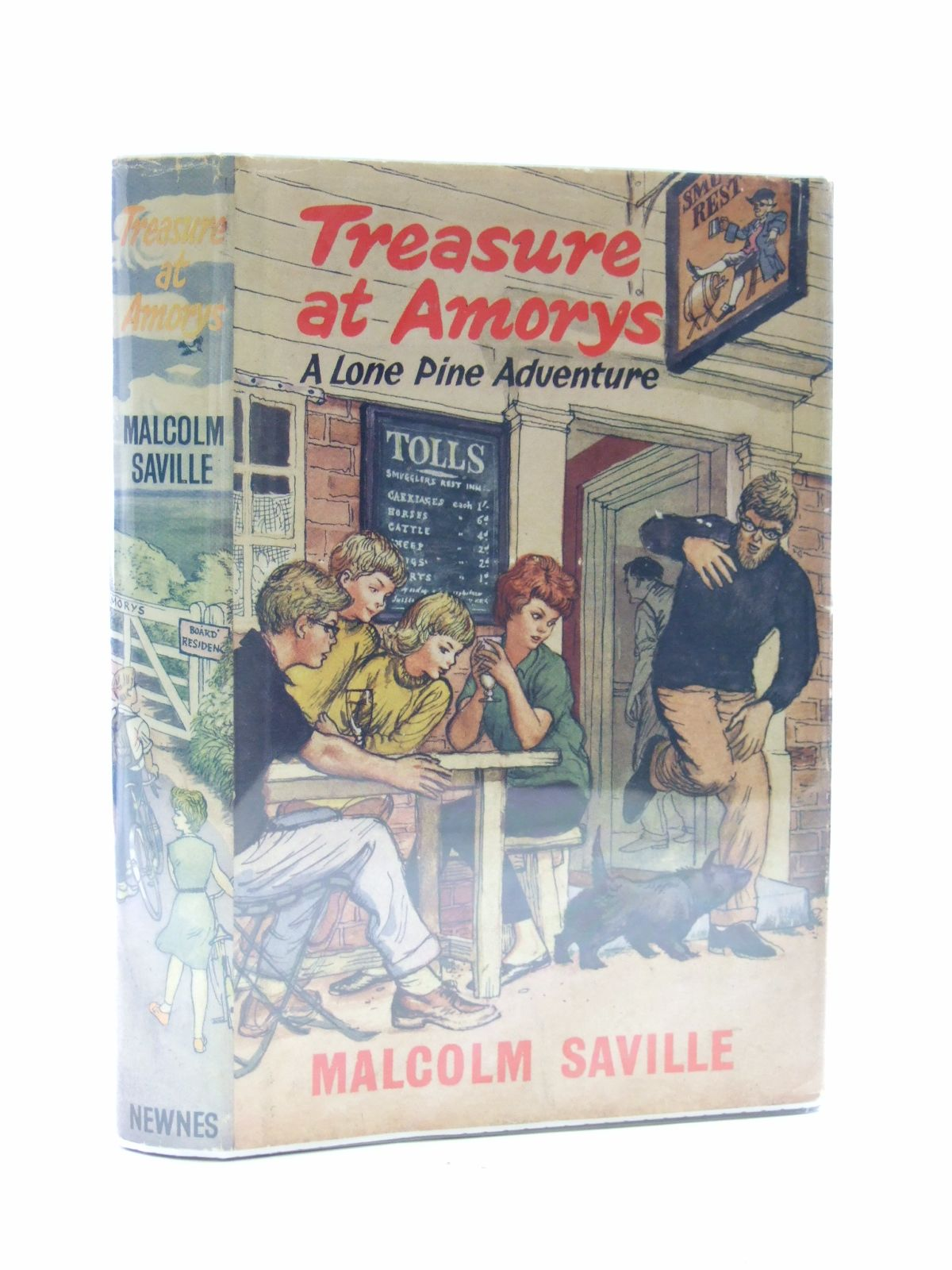 Photo of TREASURE AT AMORYS- Stock Number: 2108800