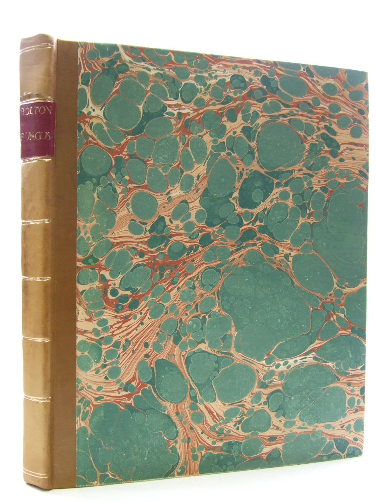 Photo of AN HISTORY OF FUNGUSSES, GROWING ABOUT HALIFAX (VOLUME II)- Stock Number: 2109298