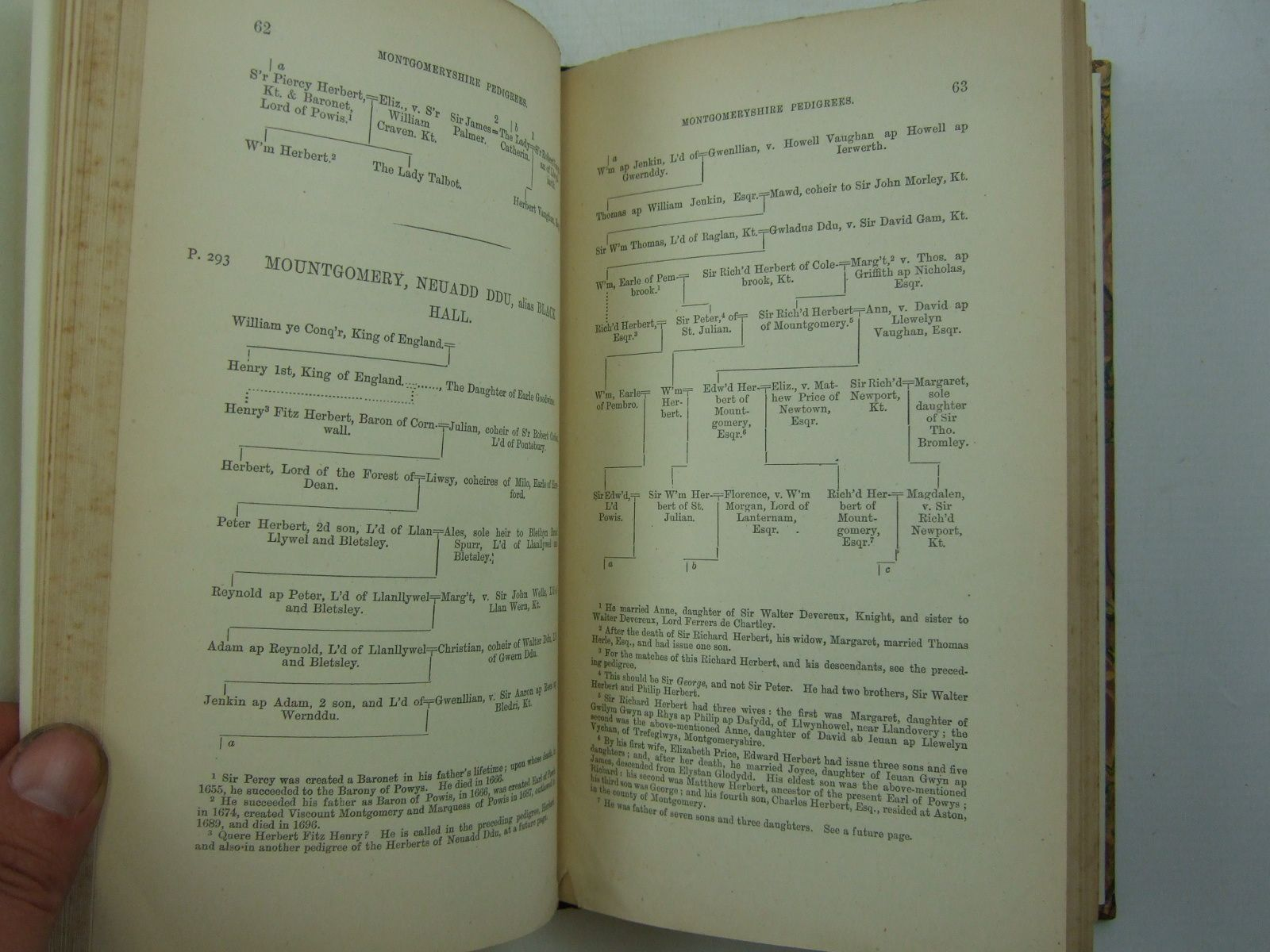 Photo of PEDIGREES OF MONTGOMERYSHIRE FAMILIES written by Rhydderch, John published by Whiting & Co. (STOCK CODE: 2109482)  for sale by Stella & Rose's Books