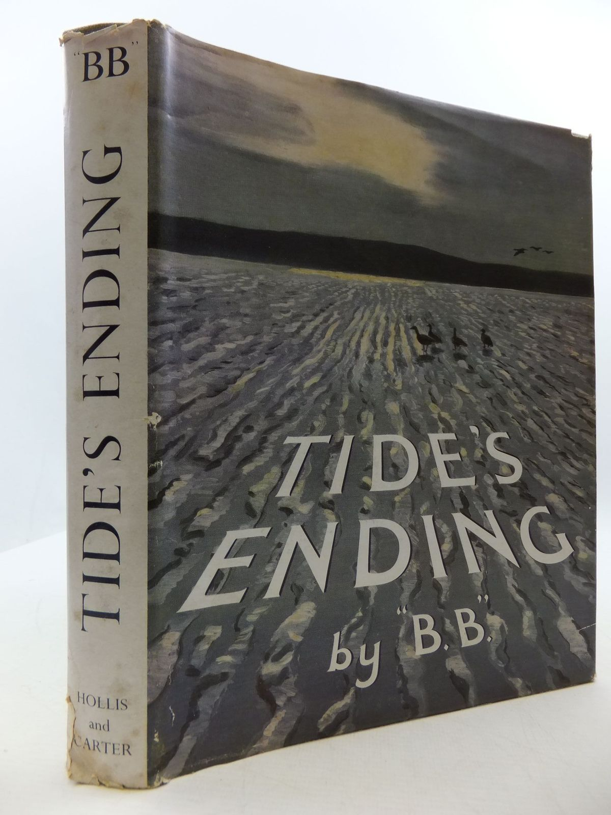Photo of TIDE'S ENDING- Stock Number: 2110403