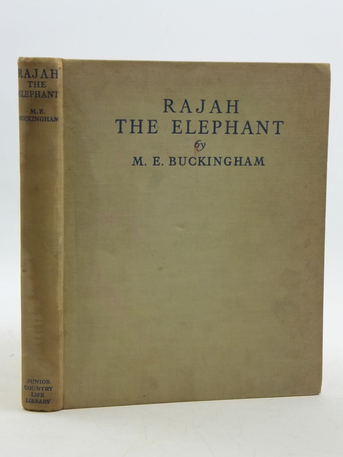 Photo of RAJAH THE ELEPHANT- Stock Number: 2111267