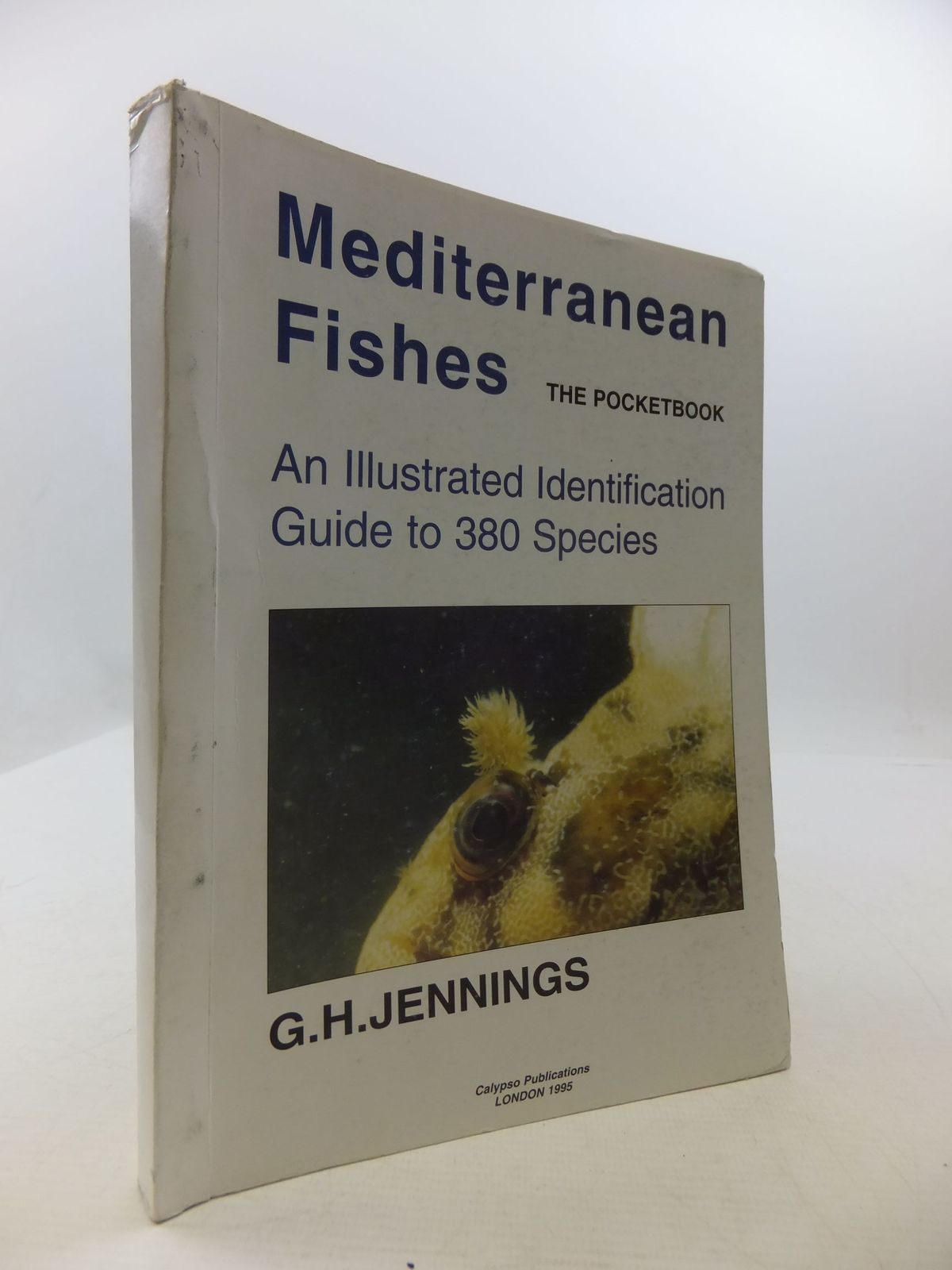 Photo of MEDITERRANEAN FISHES THE POCKETBOOK written by Jennings, G.H. published by Calypso Publications (STOCK CODE: 2111567)  for sale by Stella & Rose's Books