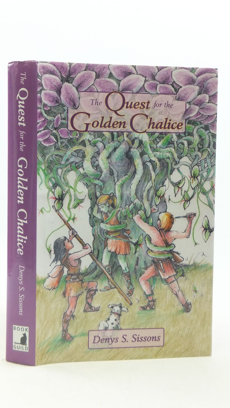 Photo of THE QUEST FOR THE GOLDEN CHALICE- Stock Number: 2111623