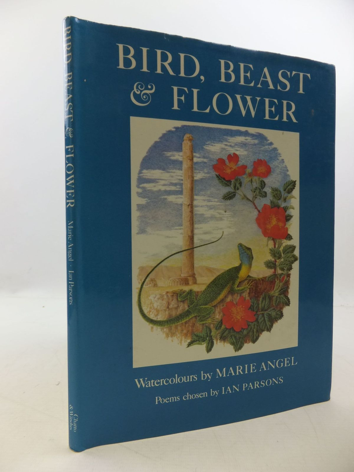 Photo of BIRD, BEAST AND FLOWER written by Parsons, Ian illustrated by Angel, Marie published by Chatto & Windus (STOCK CODE: 2112600)  for sale by Stella & Rose's Books